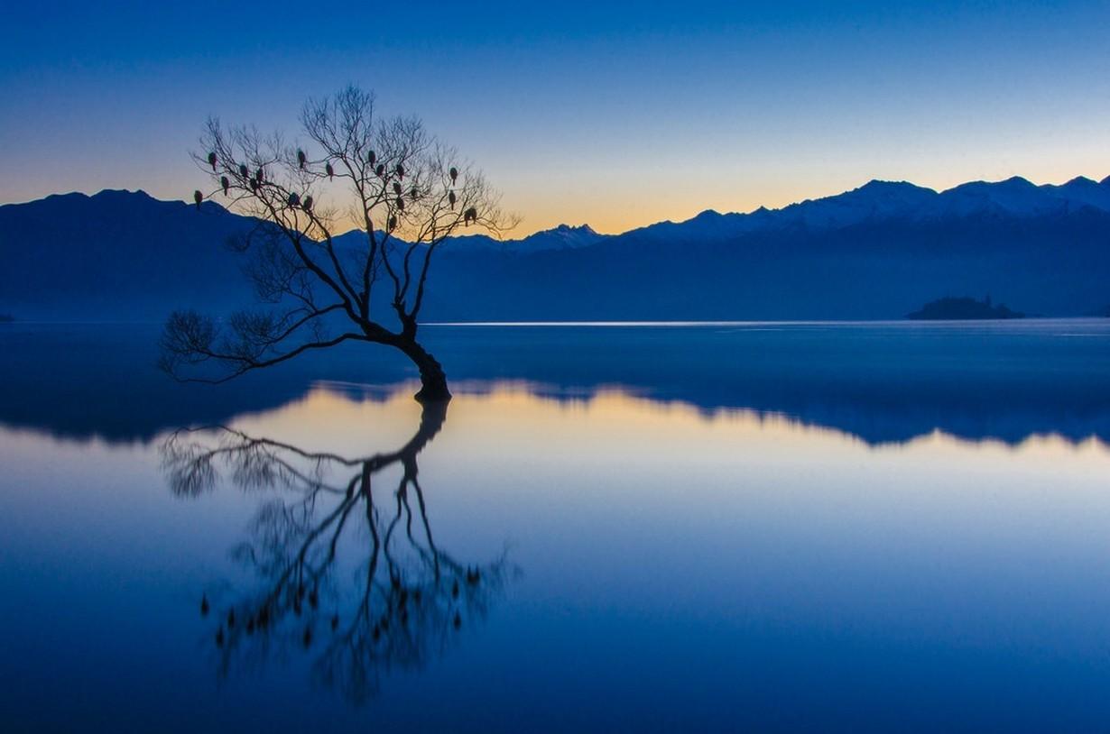 배경 화면 : 1230x814 px, 조류, 푸른, 고요한, 호수, 경치, 산들, 자연, 뉴질랜드, 반사 ...