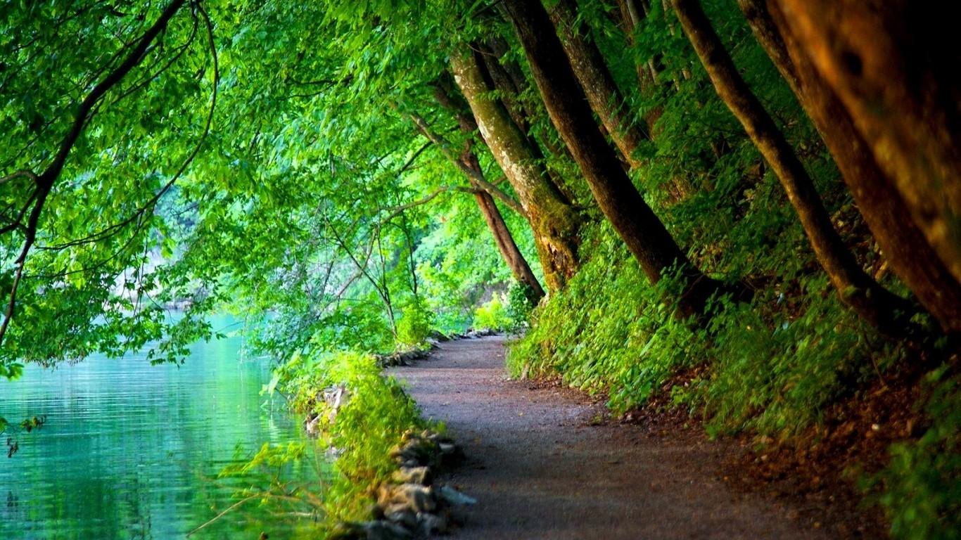 Wallpaper 1366x768 Px Croatia Landscape Nature Path