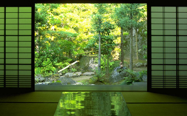Fond D écran 1440x900 Px Forêt La Nature Zen 1440x900
