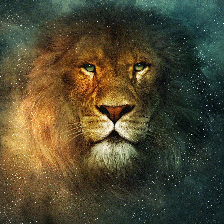 словам красивая открытка льва квартиры китайском стиле