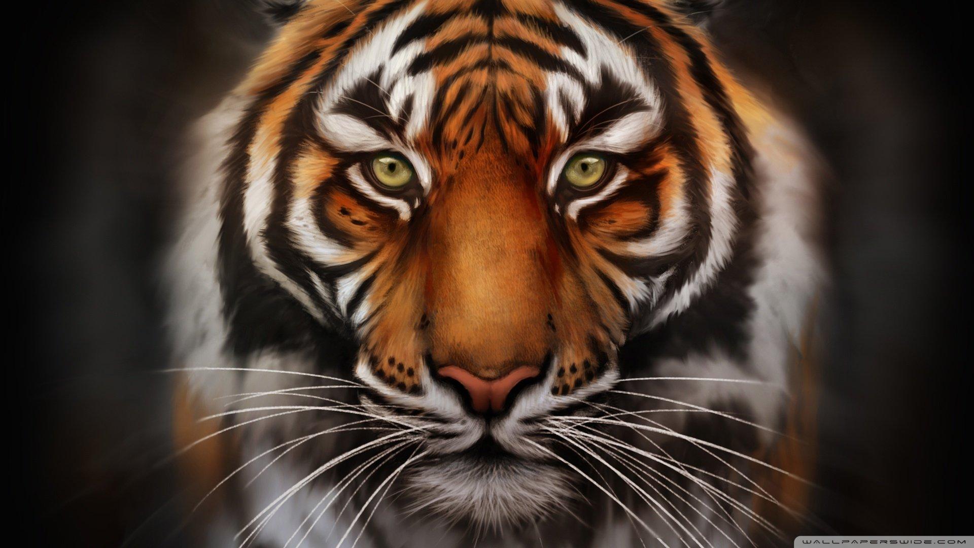 картинки для планшета тигр нюшу знают