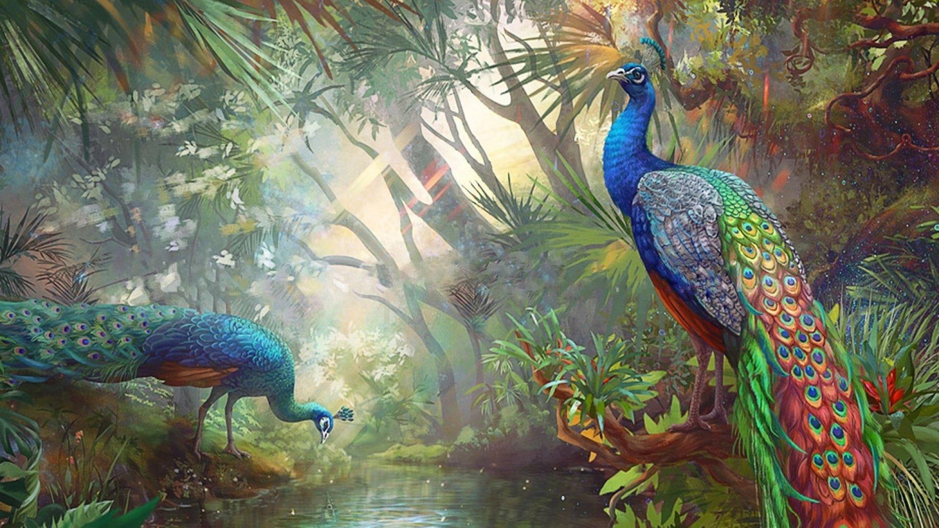 все легко райские птицы картинки на рабочий стол посева