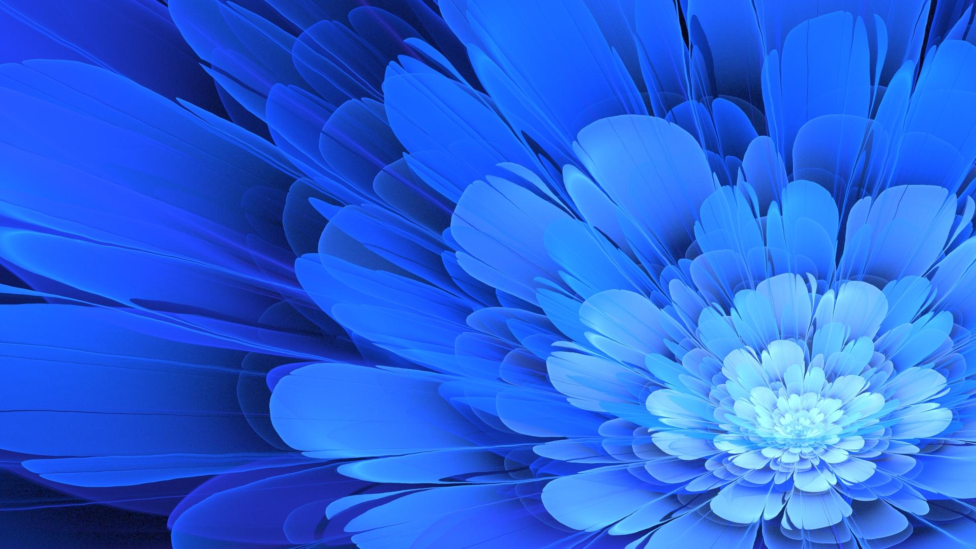 Wallpaper : 1920x1080 px, Apophysis, blue flowers ...