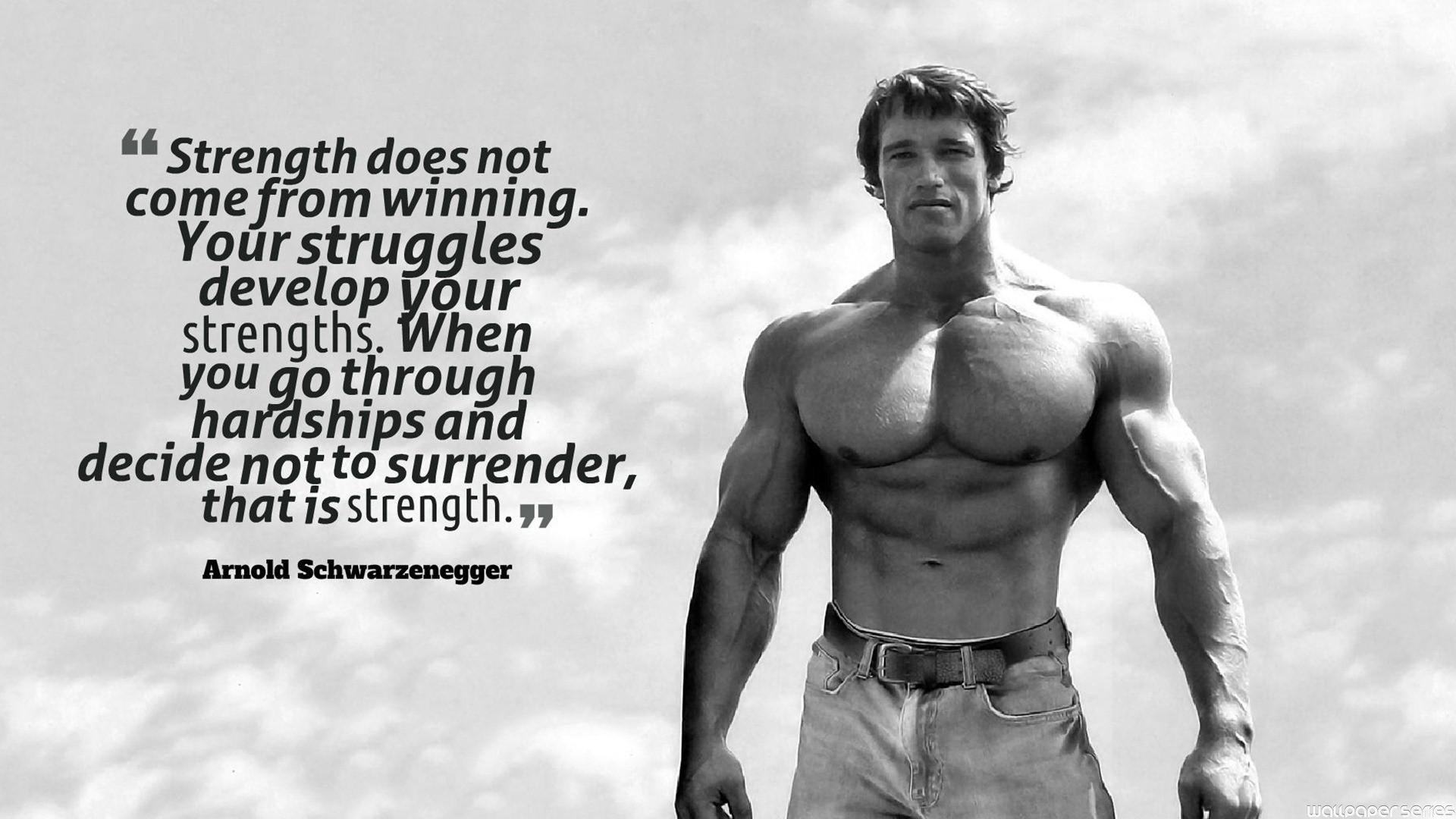 Wallpaper 1920x1080 Px Arnold Schwarzenegger