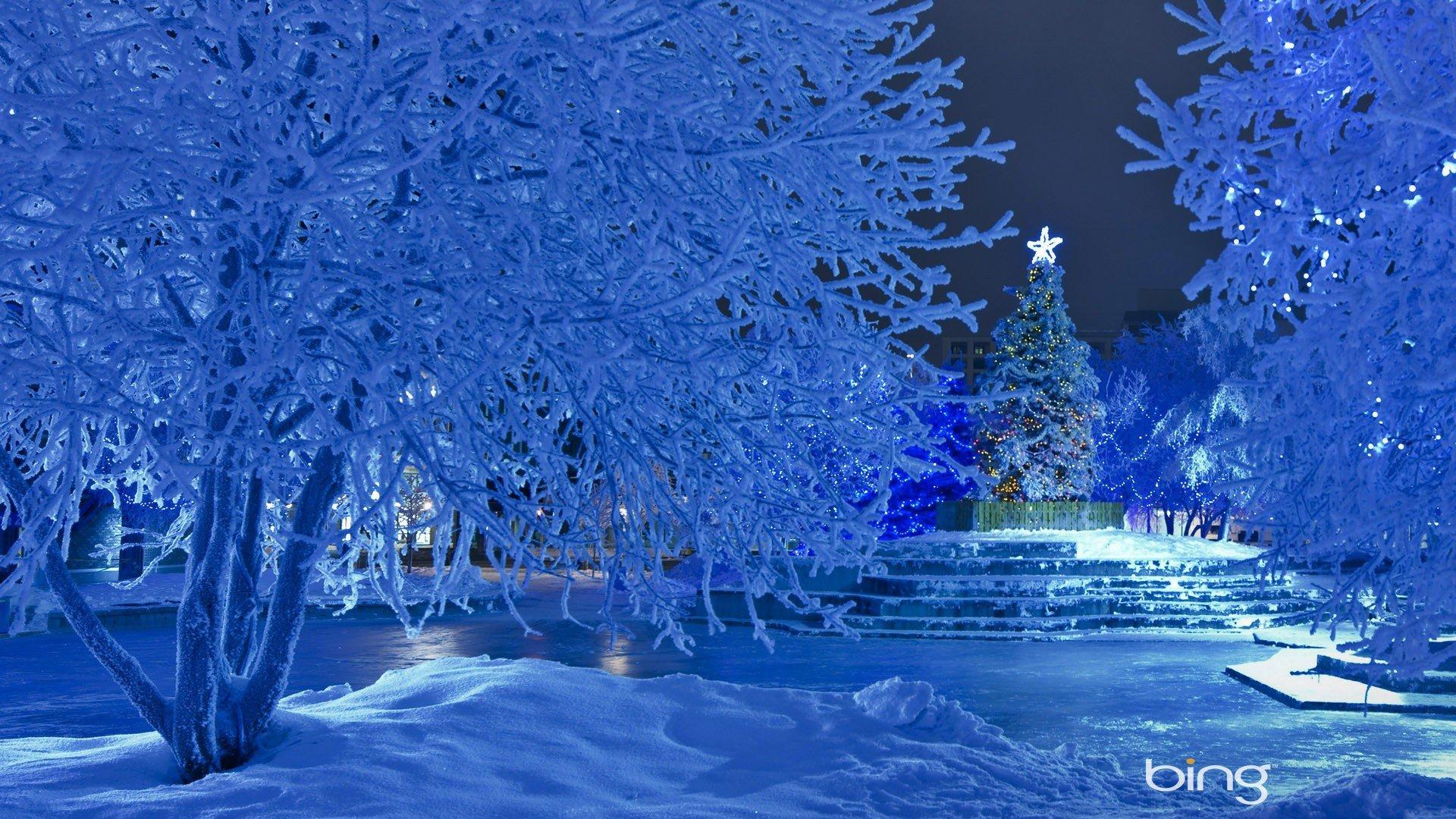 Красивые картинки на тему зима новый год