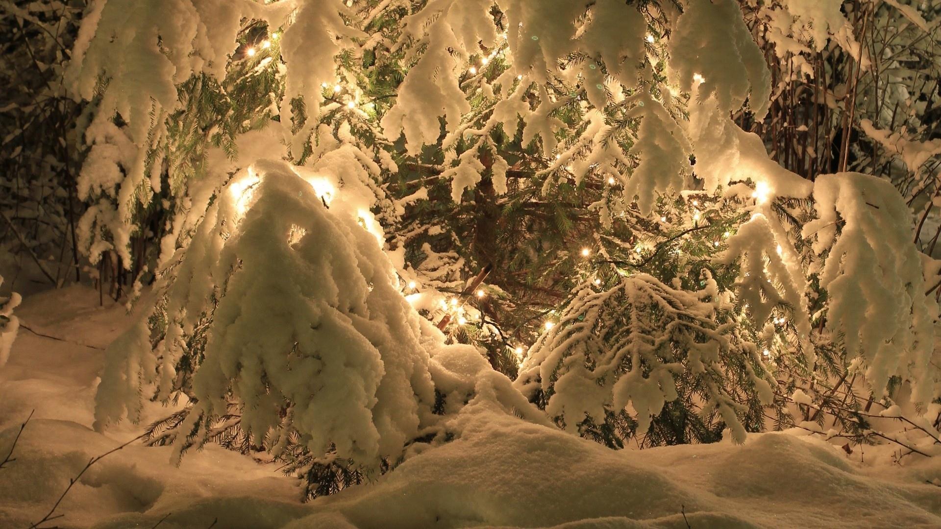 предпочтительны красивые картинки новый год зима обои слова