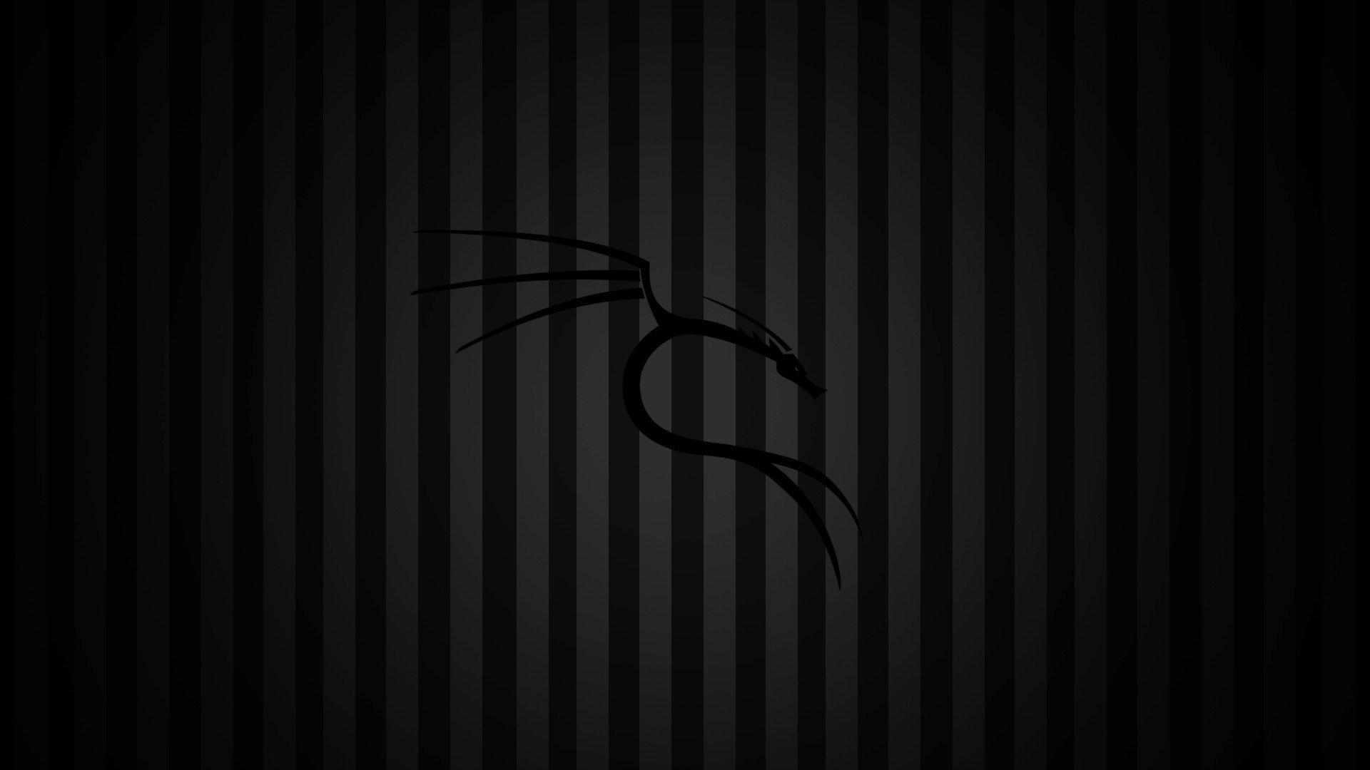 Papel De Parede 1920x1080 Px Kali Linux Kali Linux