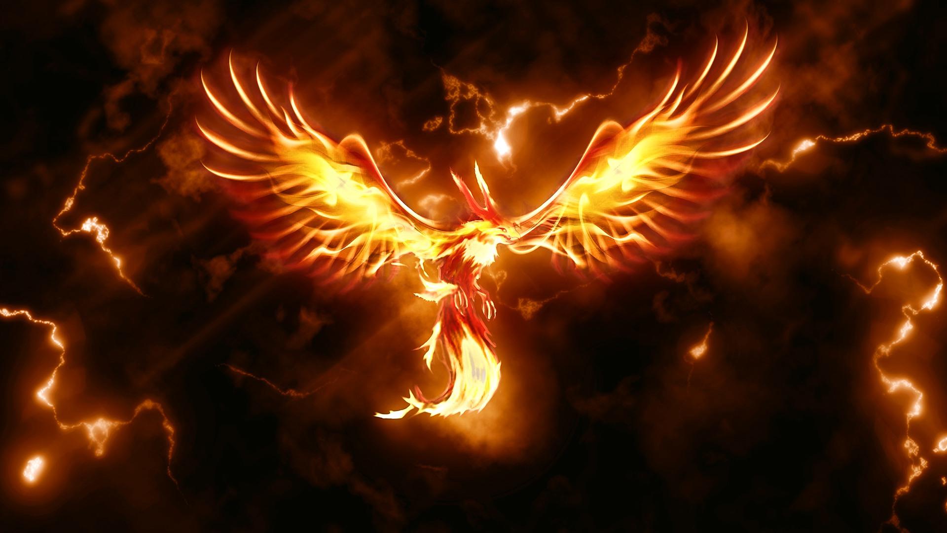 аппарат для картинки для рабочего стола огненный феникс имею виду, конечно