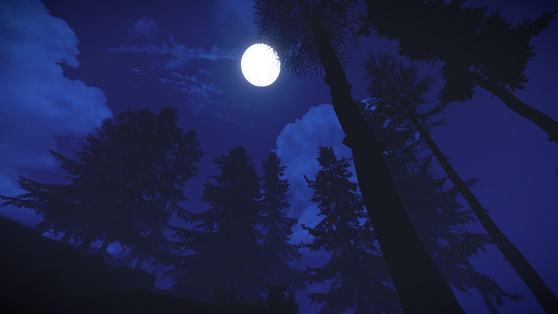 Открытка с темной ночью, викторина