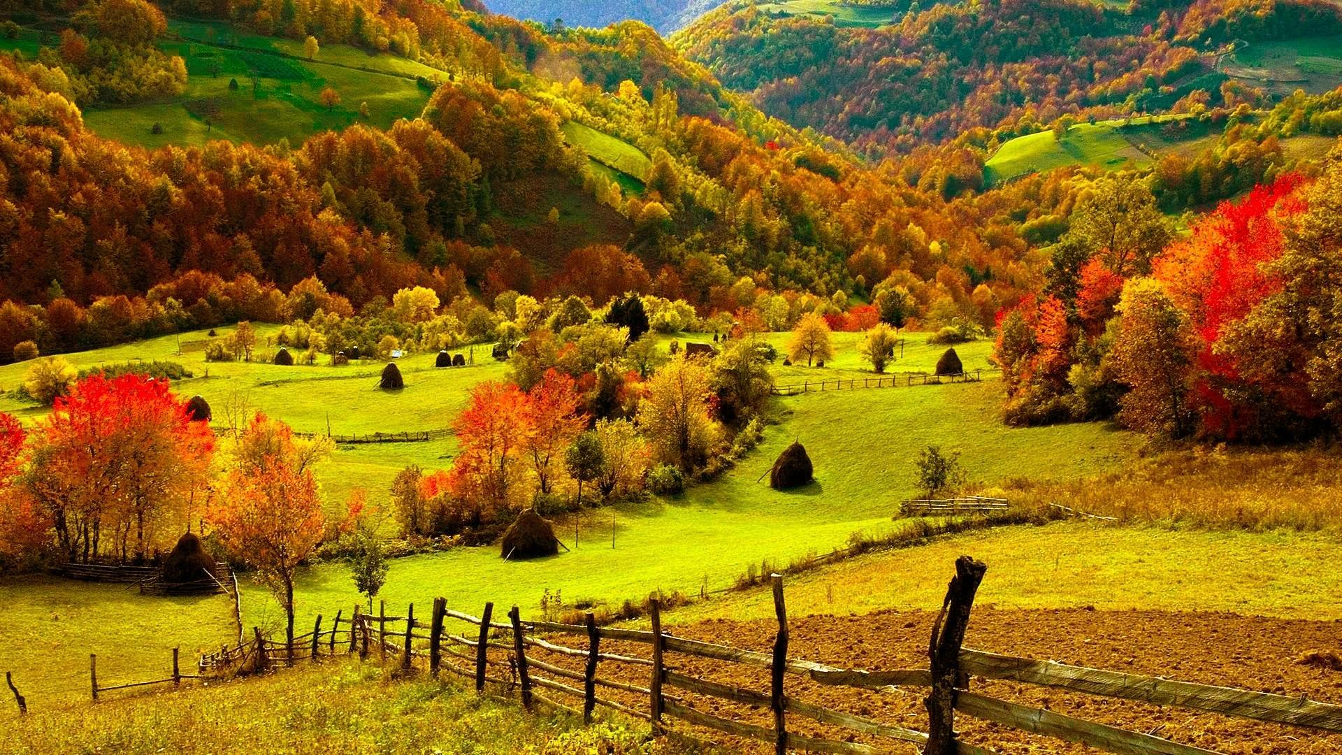 デスクトップ壁紙 19x1080 Px 秋 明るい 色 ファーム フェンス フィールド 森林 草 丘 風景 葉 自然 風光明媚な 季節 木 見る 19x1080 Coolwallpapers デスクトップ壁紙 Wallhere