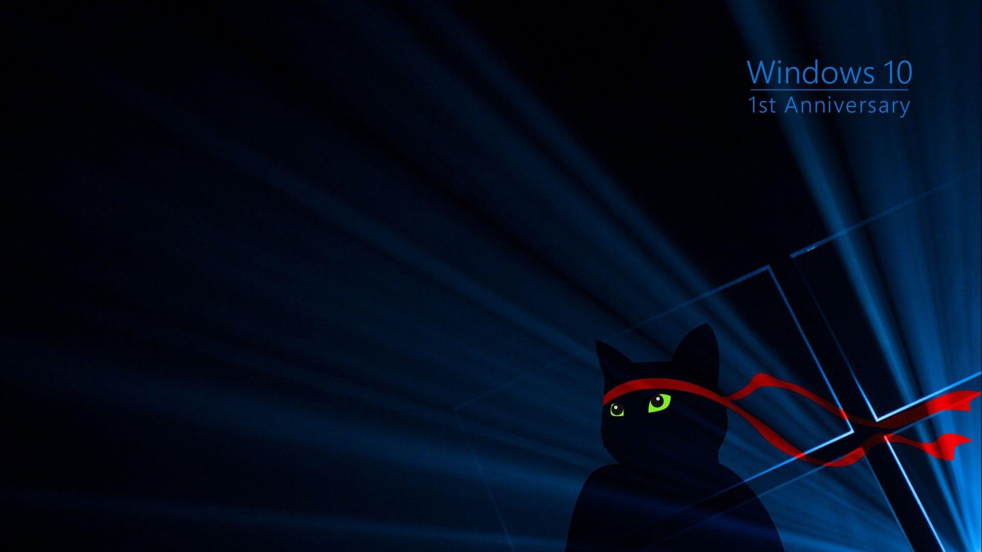 Wallpaper 1920x1080 Px Black Blue Cat Dark Green Red