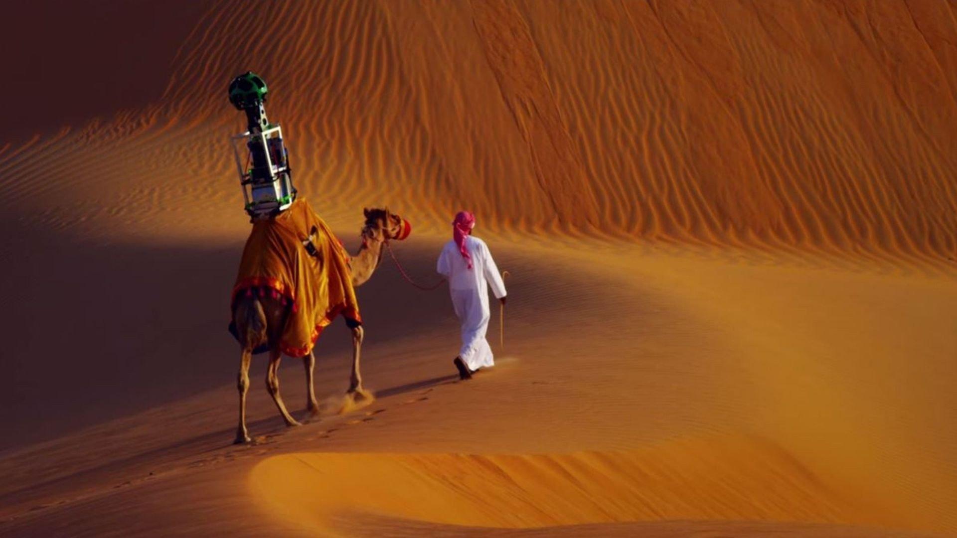 Wallpaper 1920x1080 Px Camels Camera Desert Google