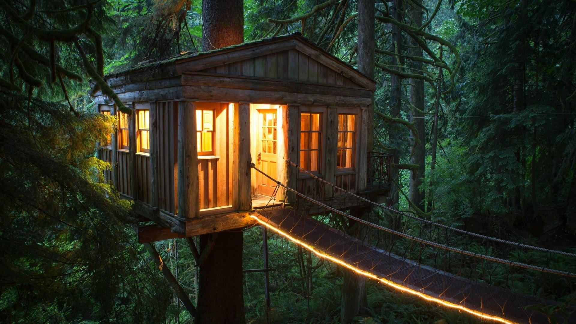дом на окраине леса картинки для