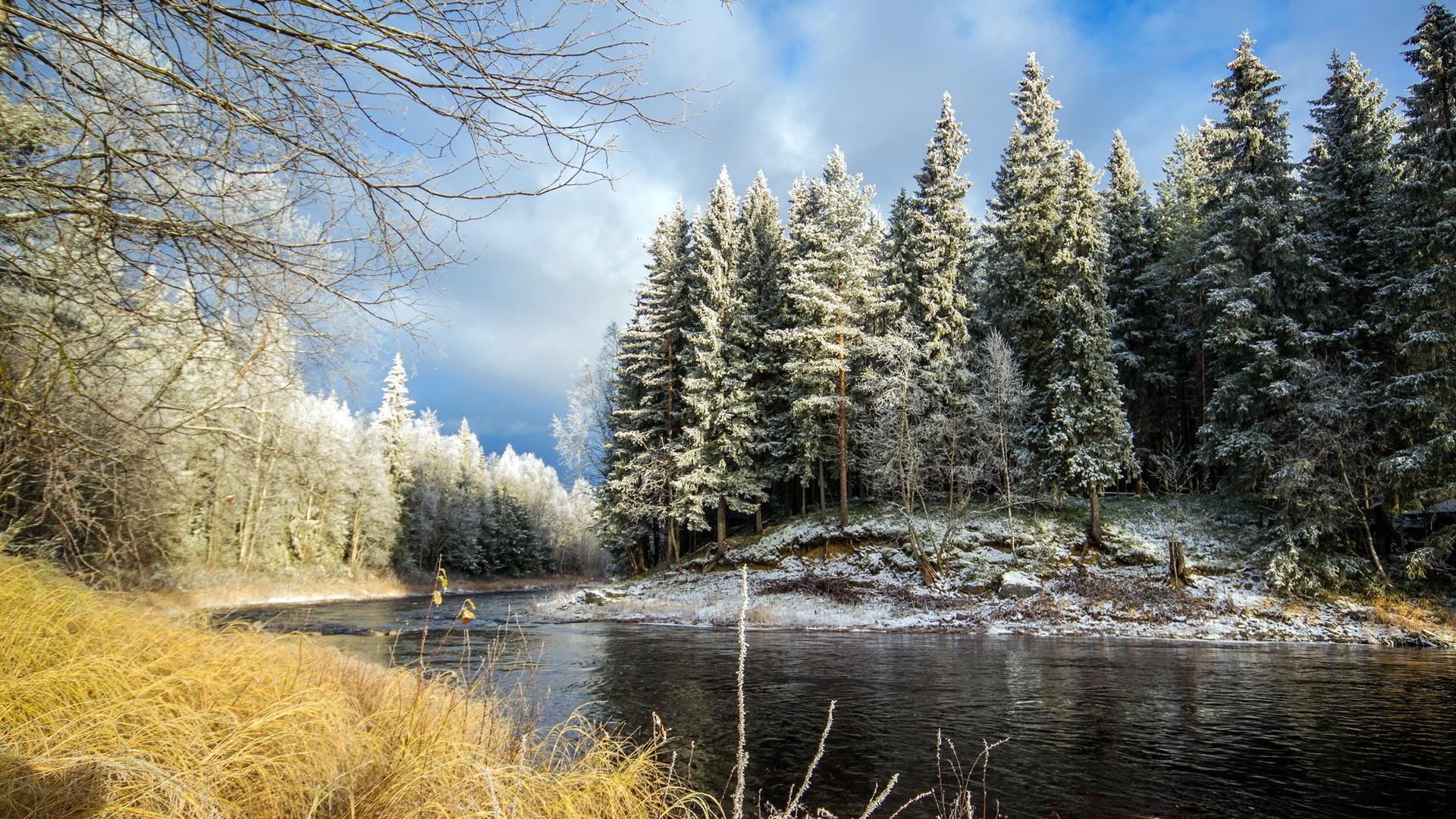 Картинки на телефон природа весна река