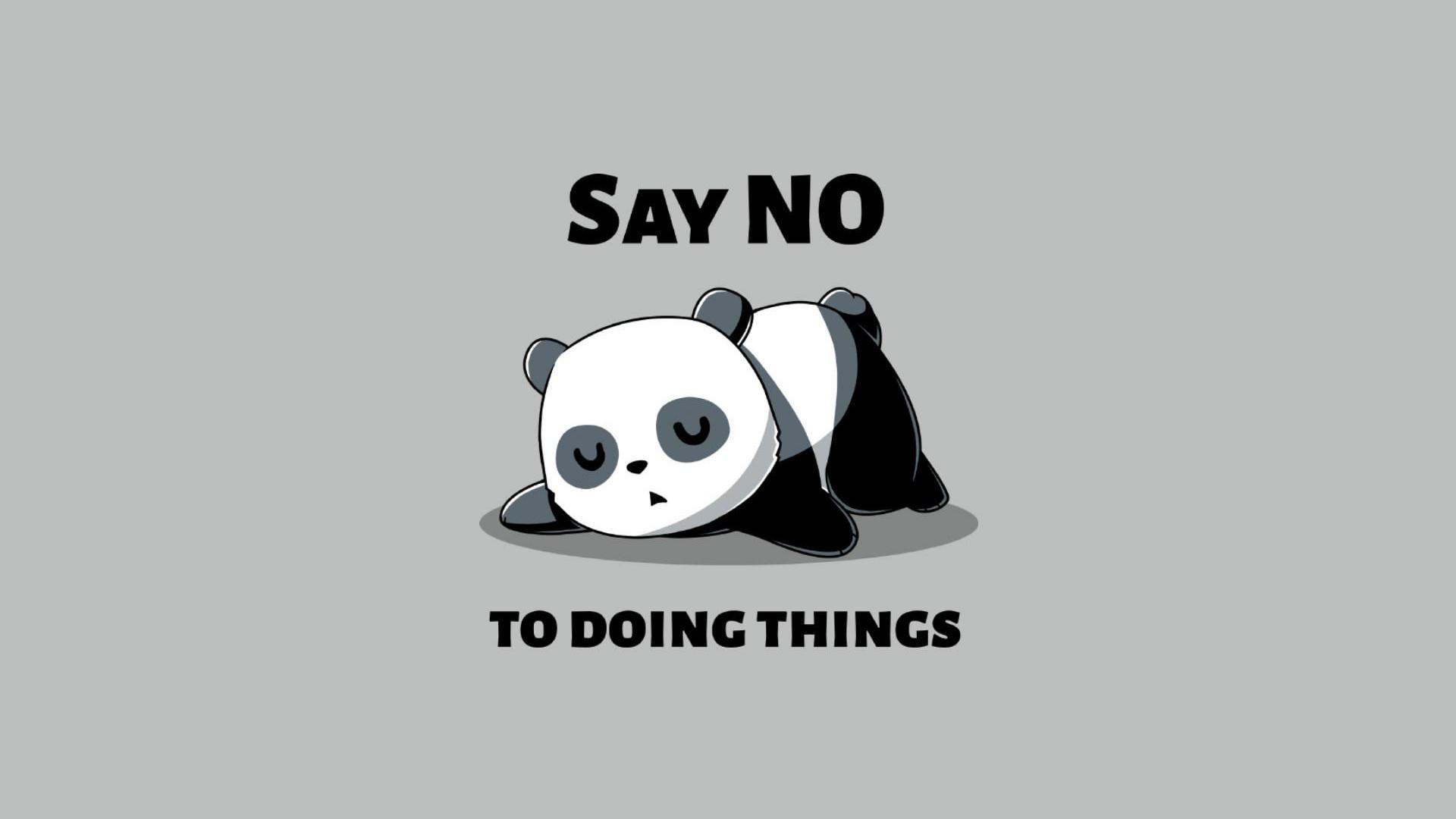 Fond Décran 1920x1080 Px Humour Panda Fond Simple