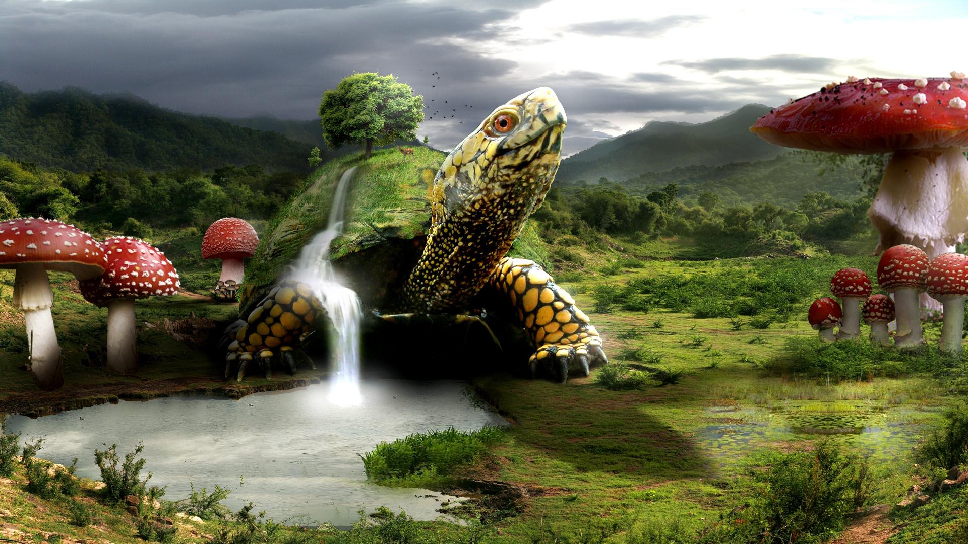 Wallpaper 1920x1080 Px Landscape Mushroom Turtle