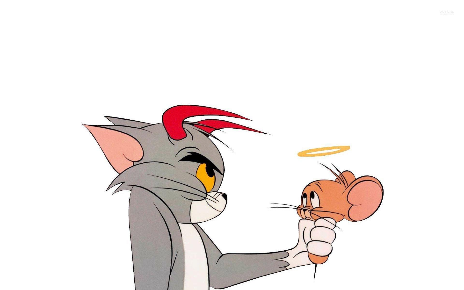 Обои на телефон кот том