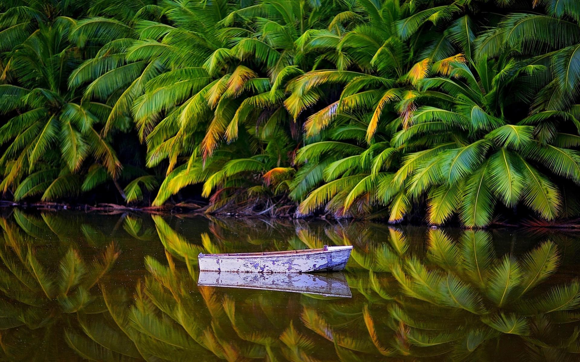 Wallpaper 1920x1200 Px Australia Boat Island Jungles