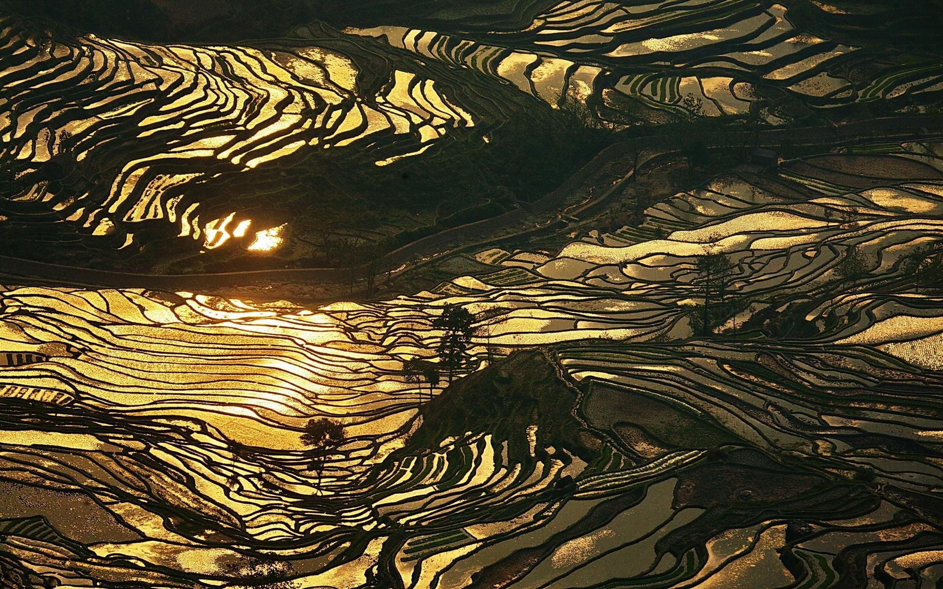Fondos De Pantalla 1920x1200 Px China Oro Paisaje