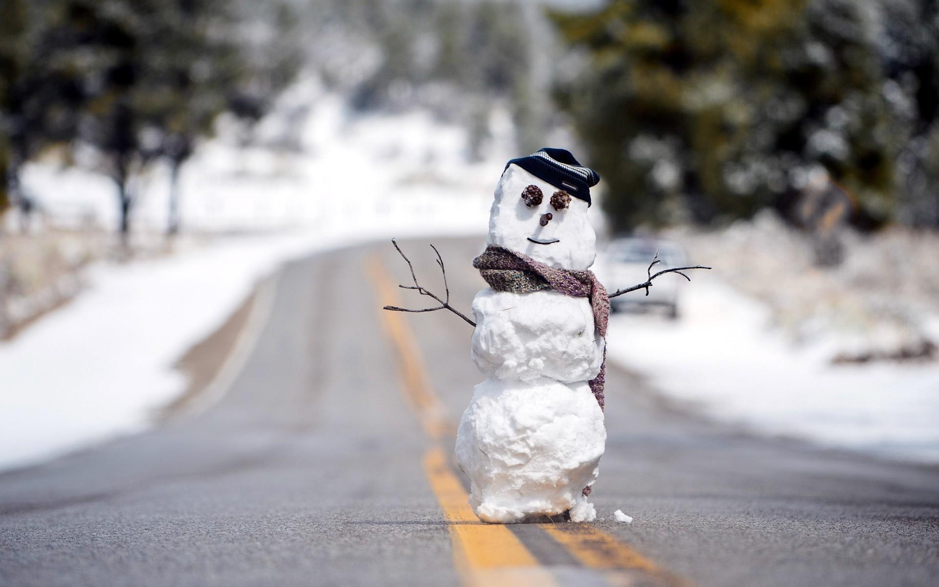 прикольные картинки с ранней зимой как стало известно