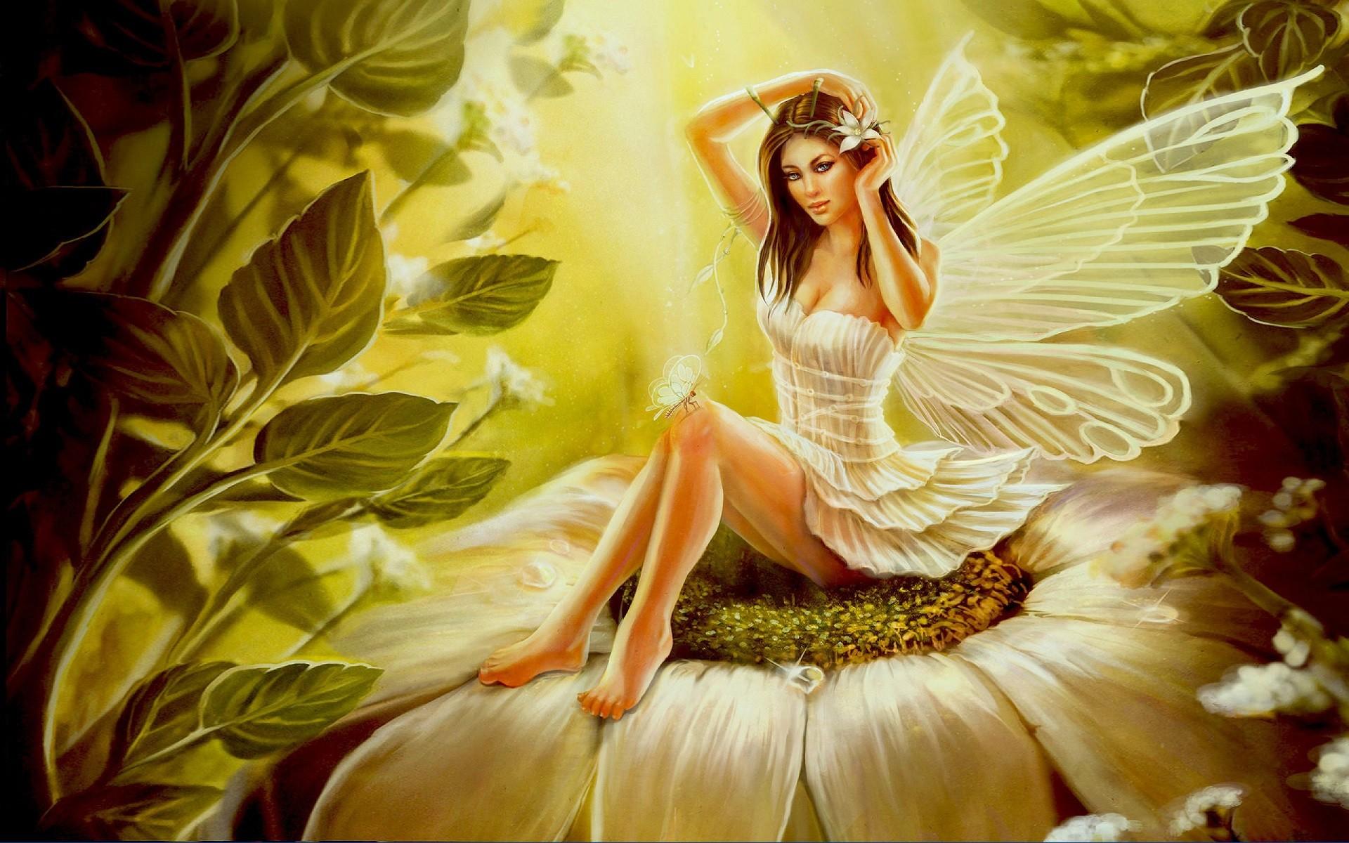 Девушки бабочки цветы картинки