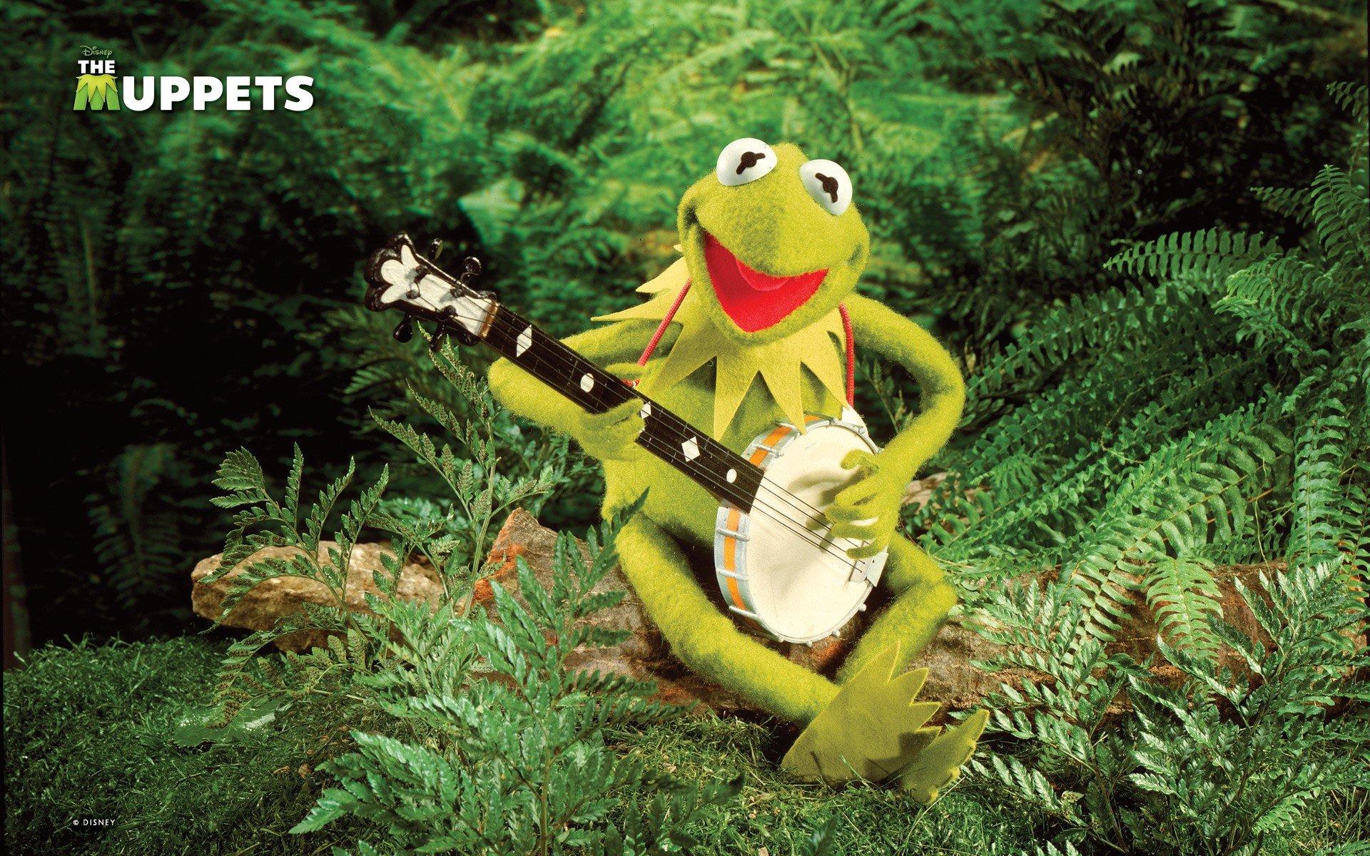 Wallpaper 1920x1200 Px Banjo Frog Frogs Green Henson