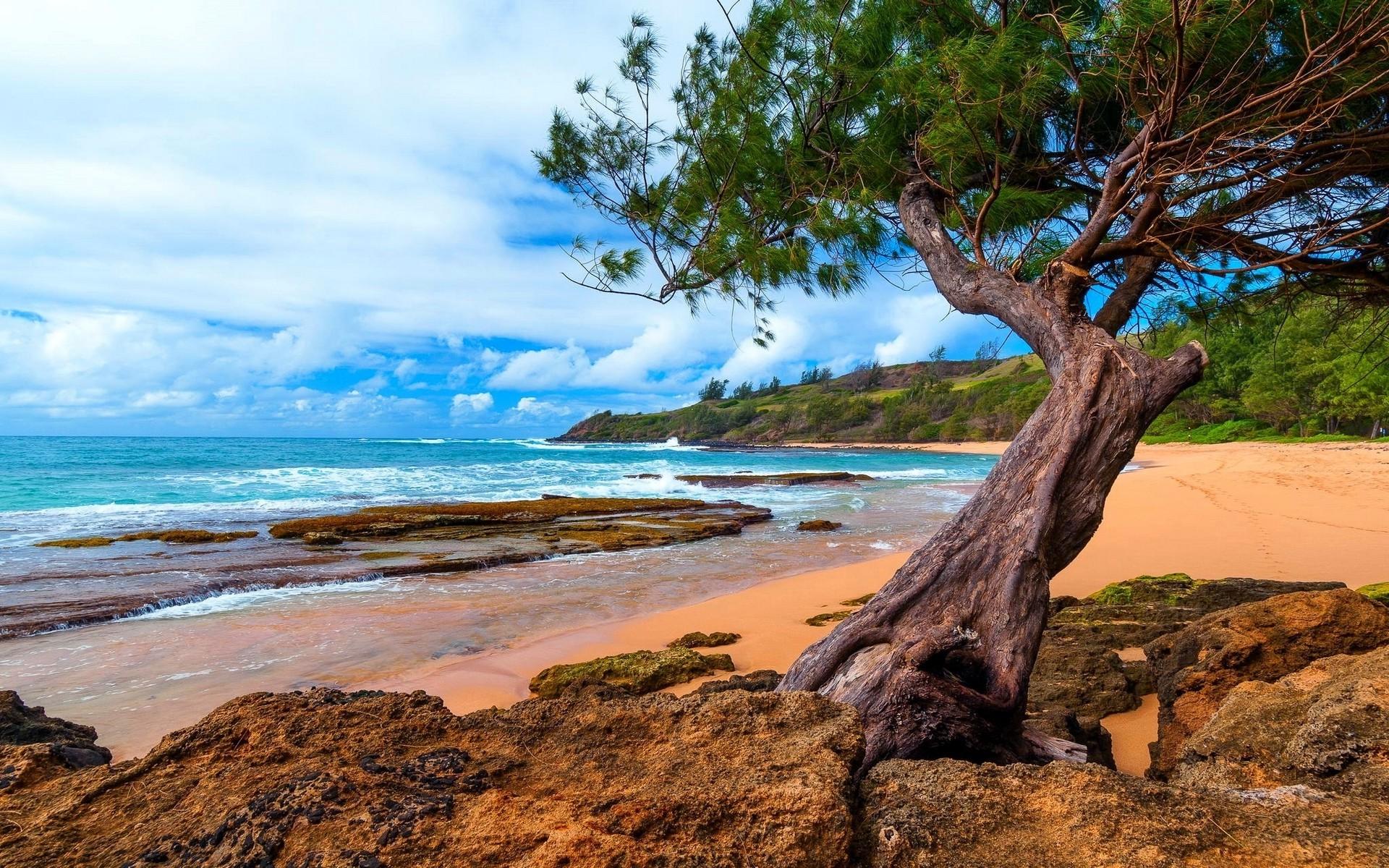Fond d'écran : 1920 x 1200 px, plage, des nuages, Hawaii, île, Kauai, paysage, la nature ...