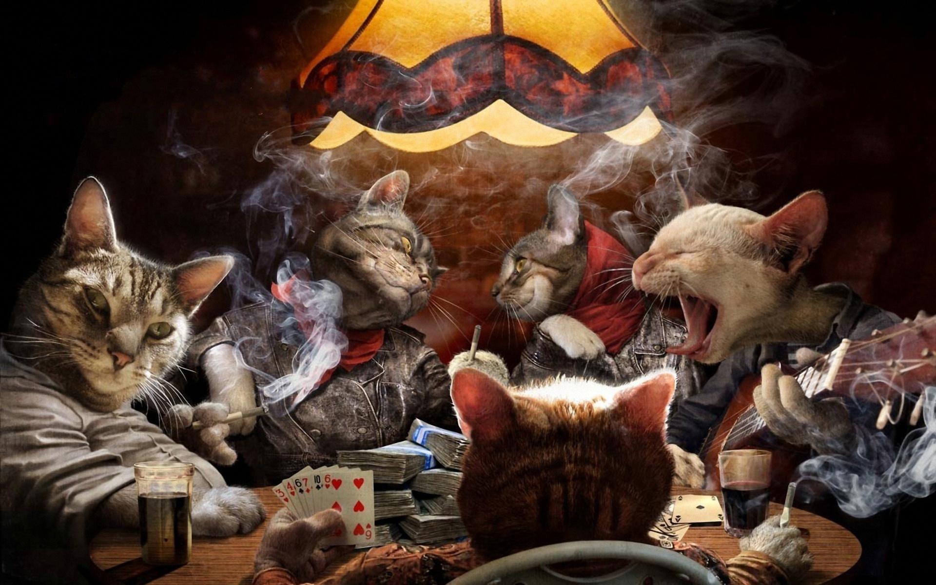 Играют в карты прикол демо игра казино вулкан