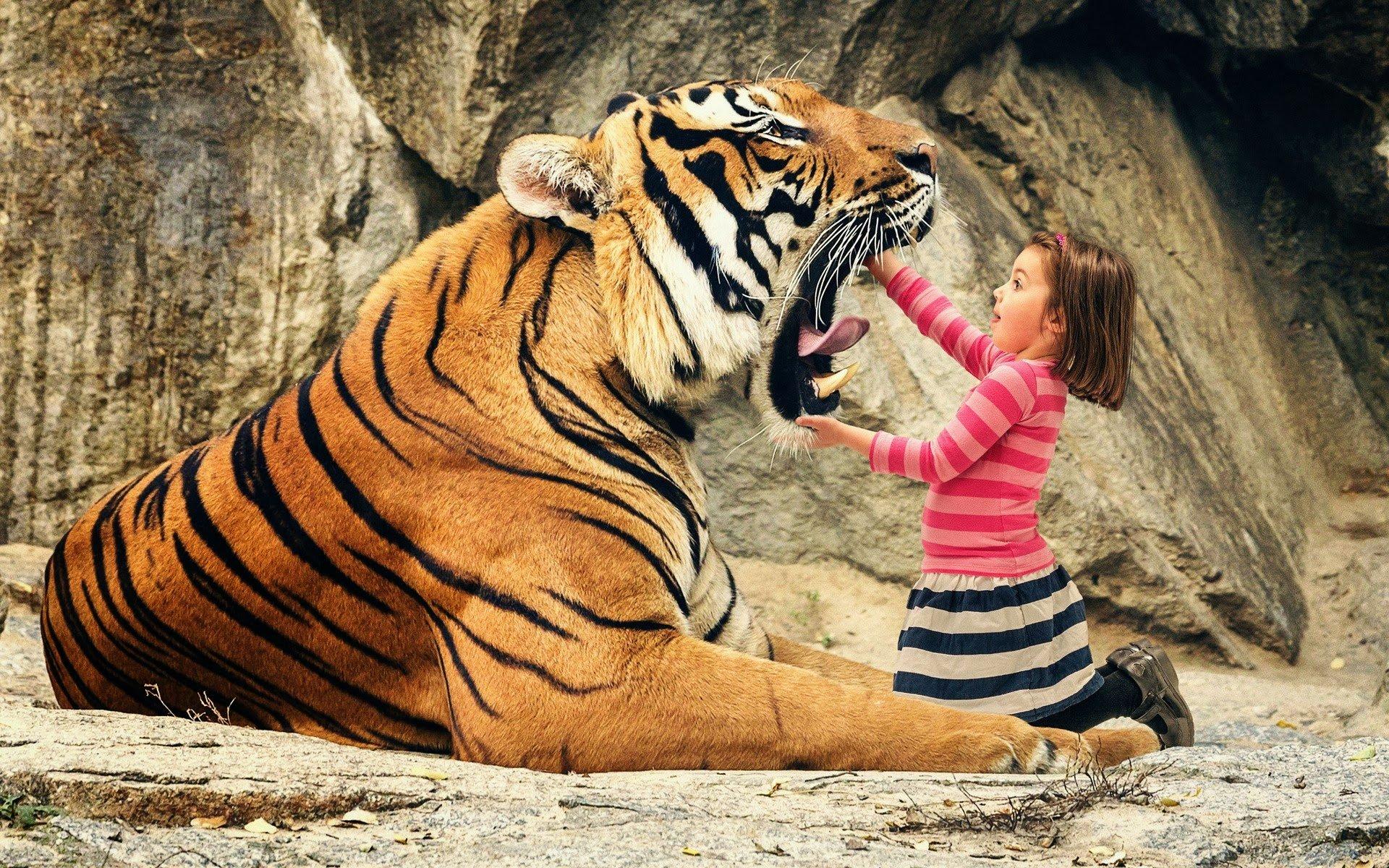 самые красивые картинки с человеком и животными