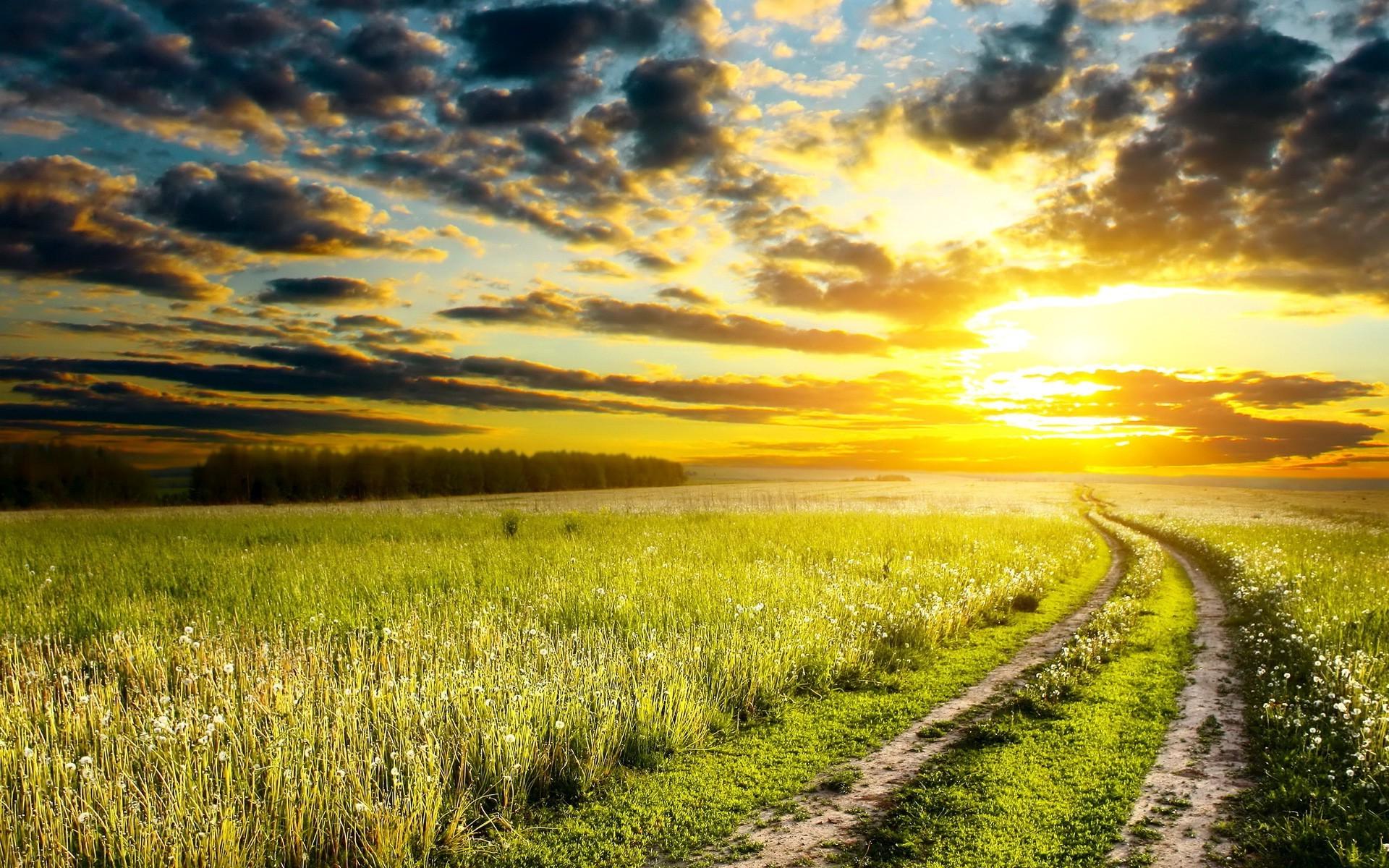 1920x1200 Px Clouds Dirt Road Grass Landscape Nature Path Sunset