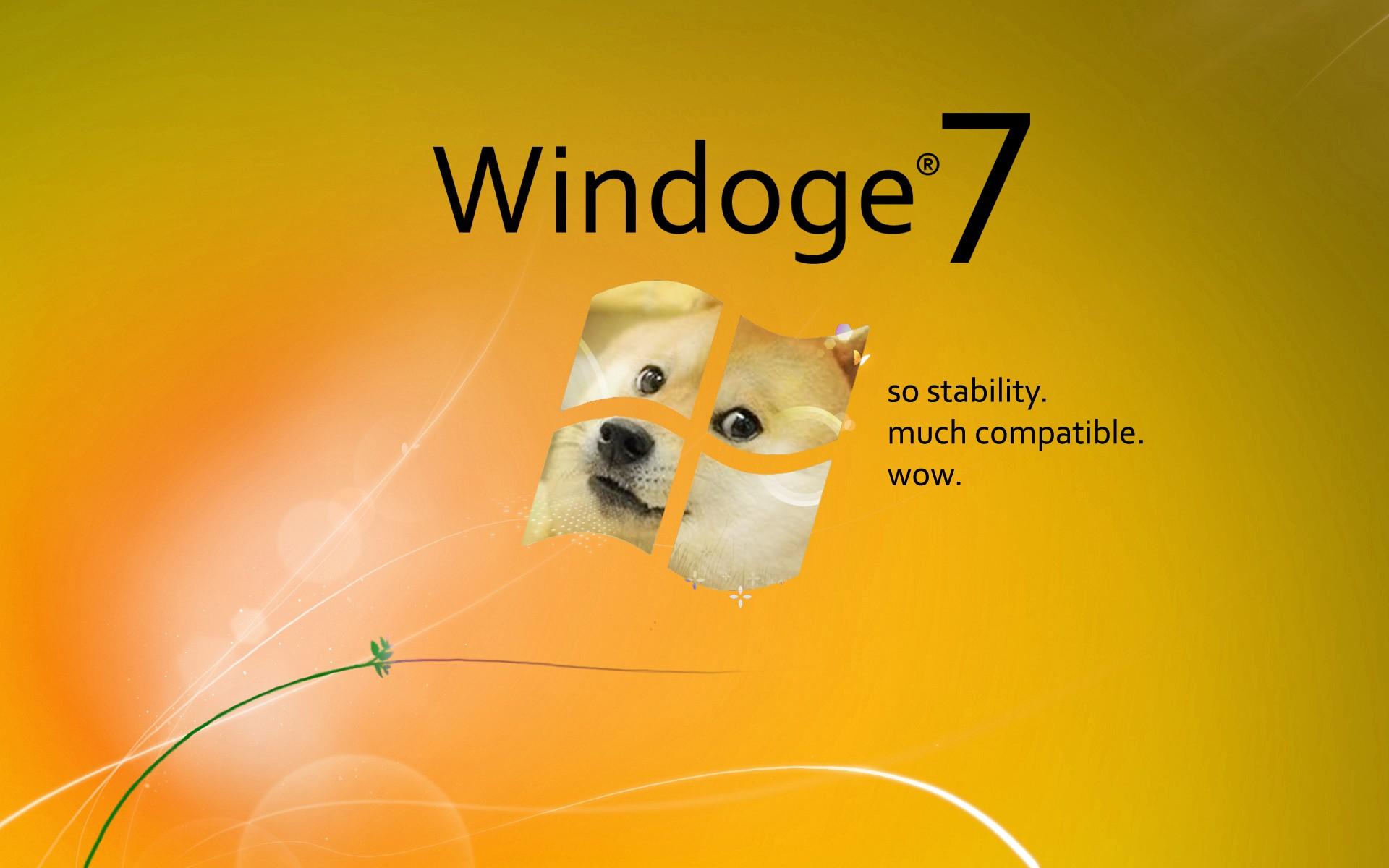 Wallpaper 1920x1200 Px Doge Memes Microsoft Windows