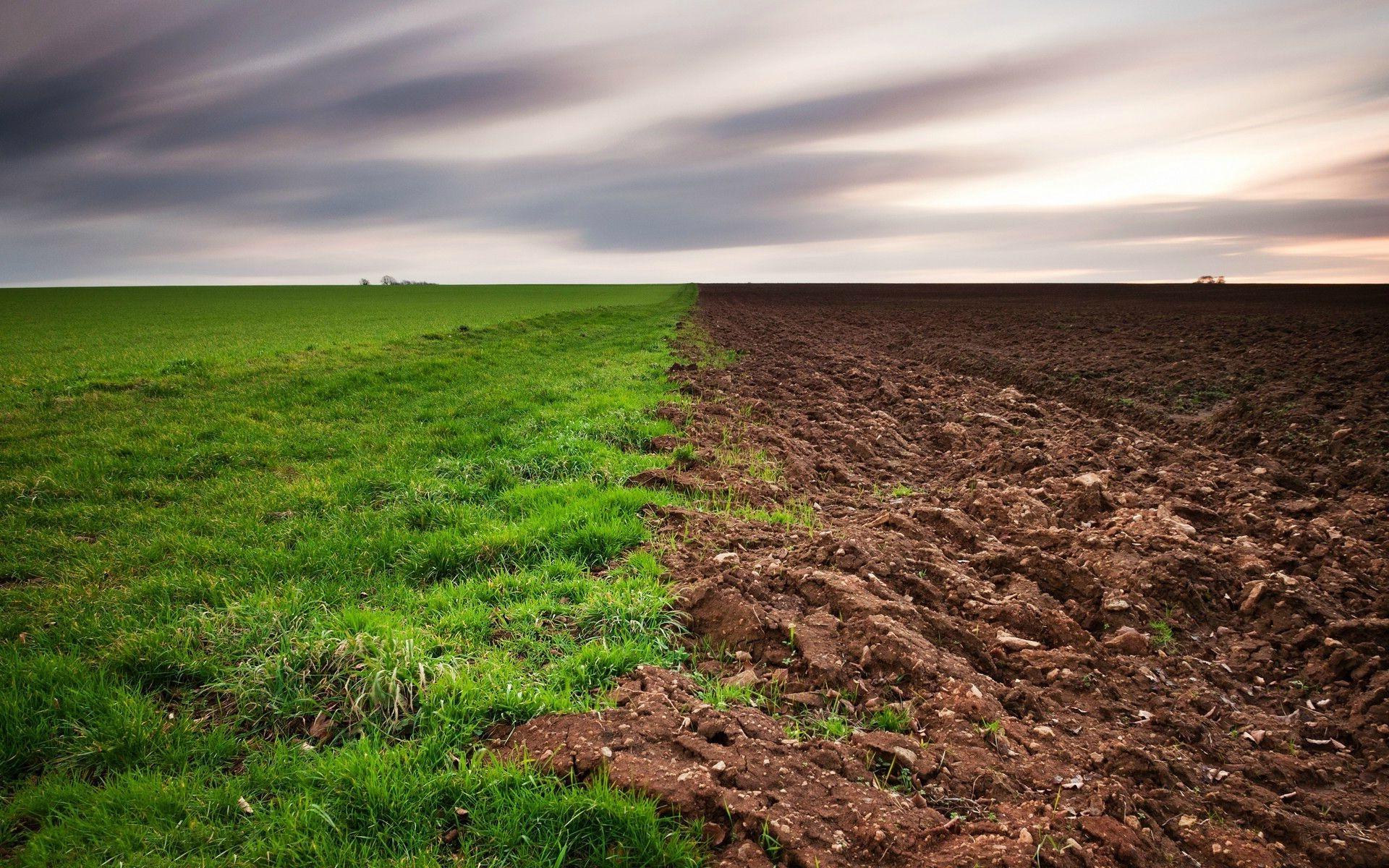 время фото или картинки почв теряет своей