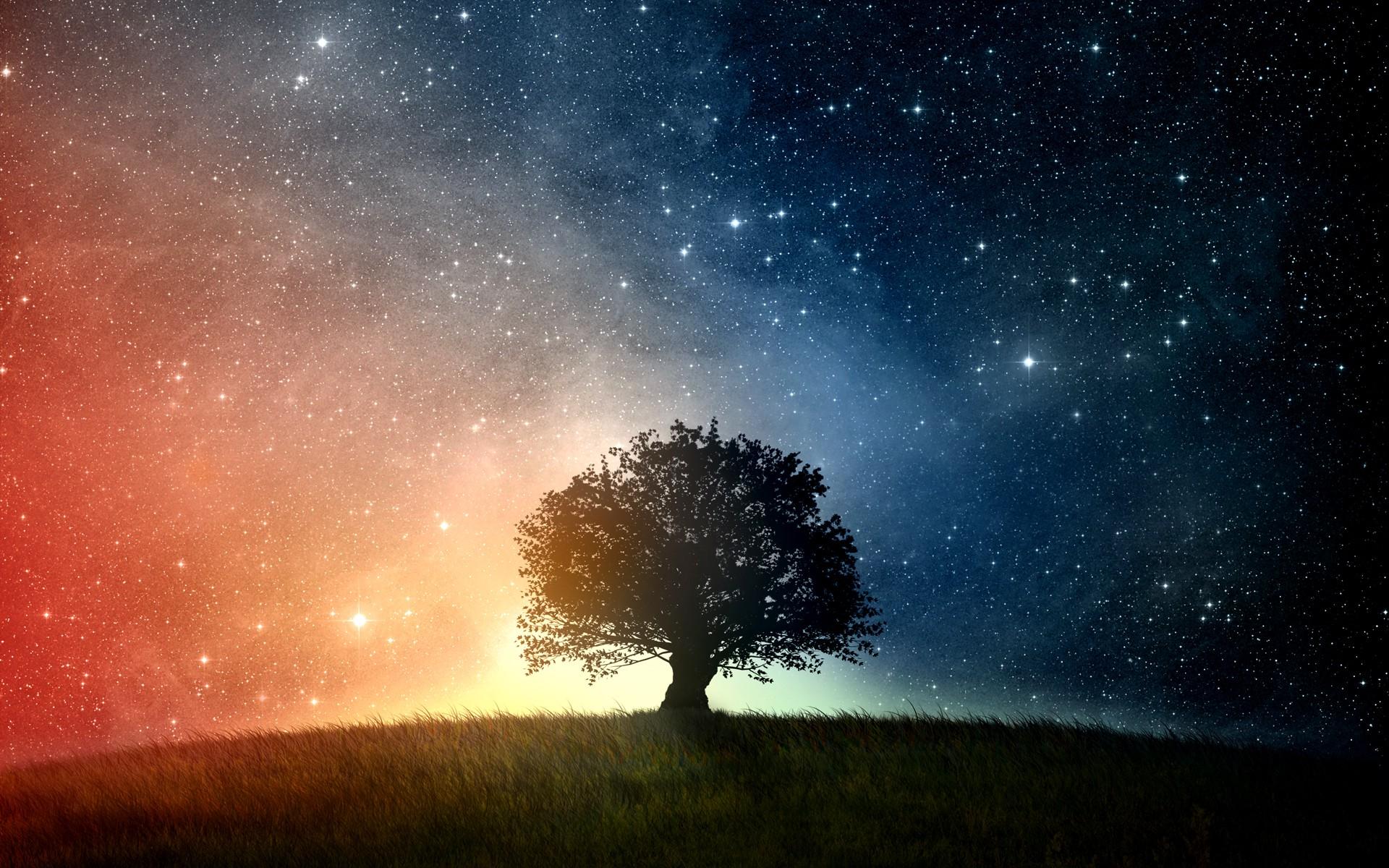 Картинки с деревом и звездами
