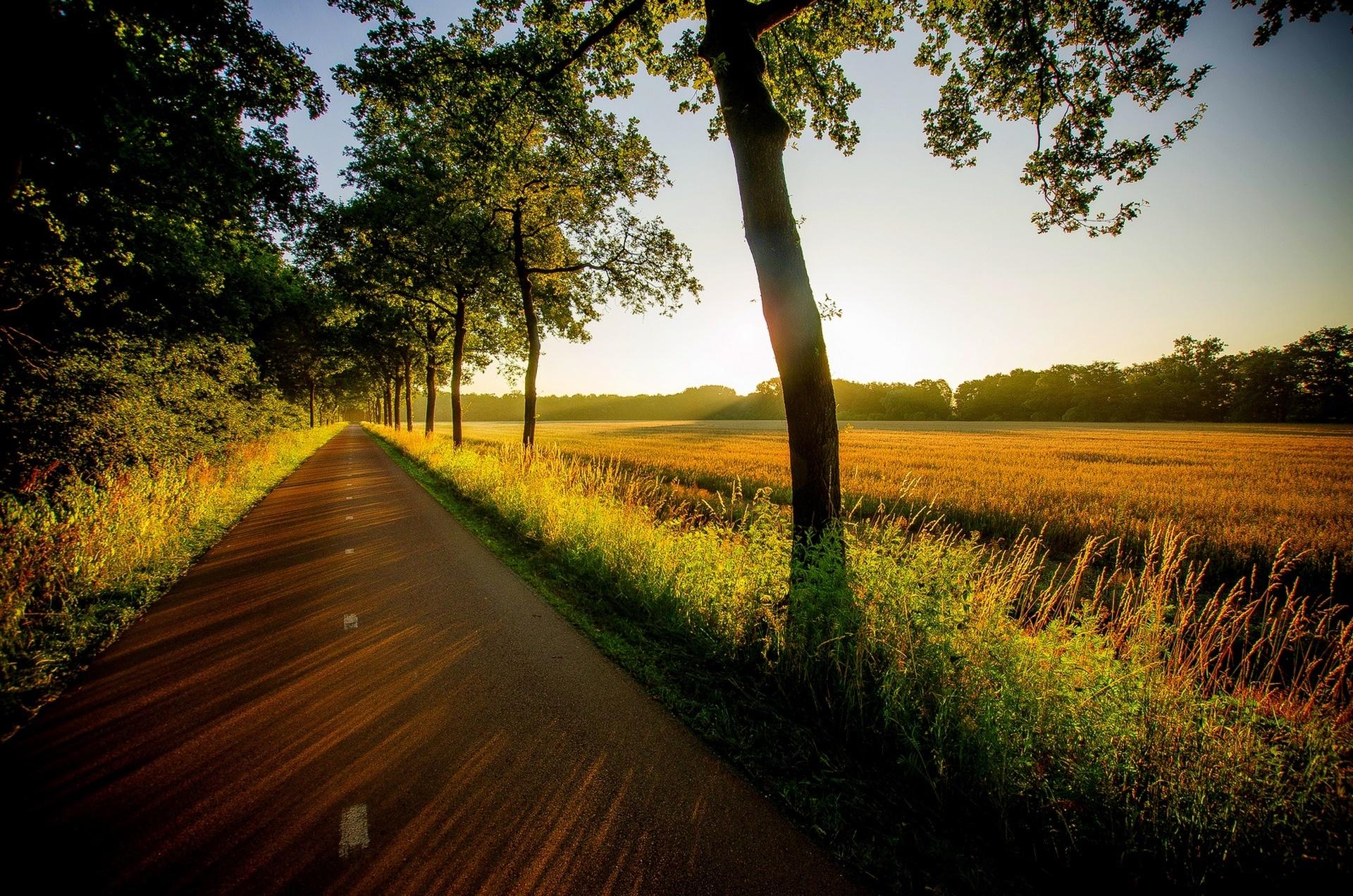 картинка с природой и дорог двухкомнатную