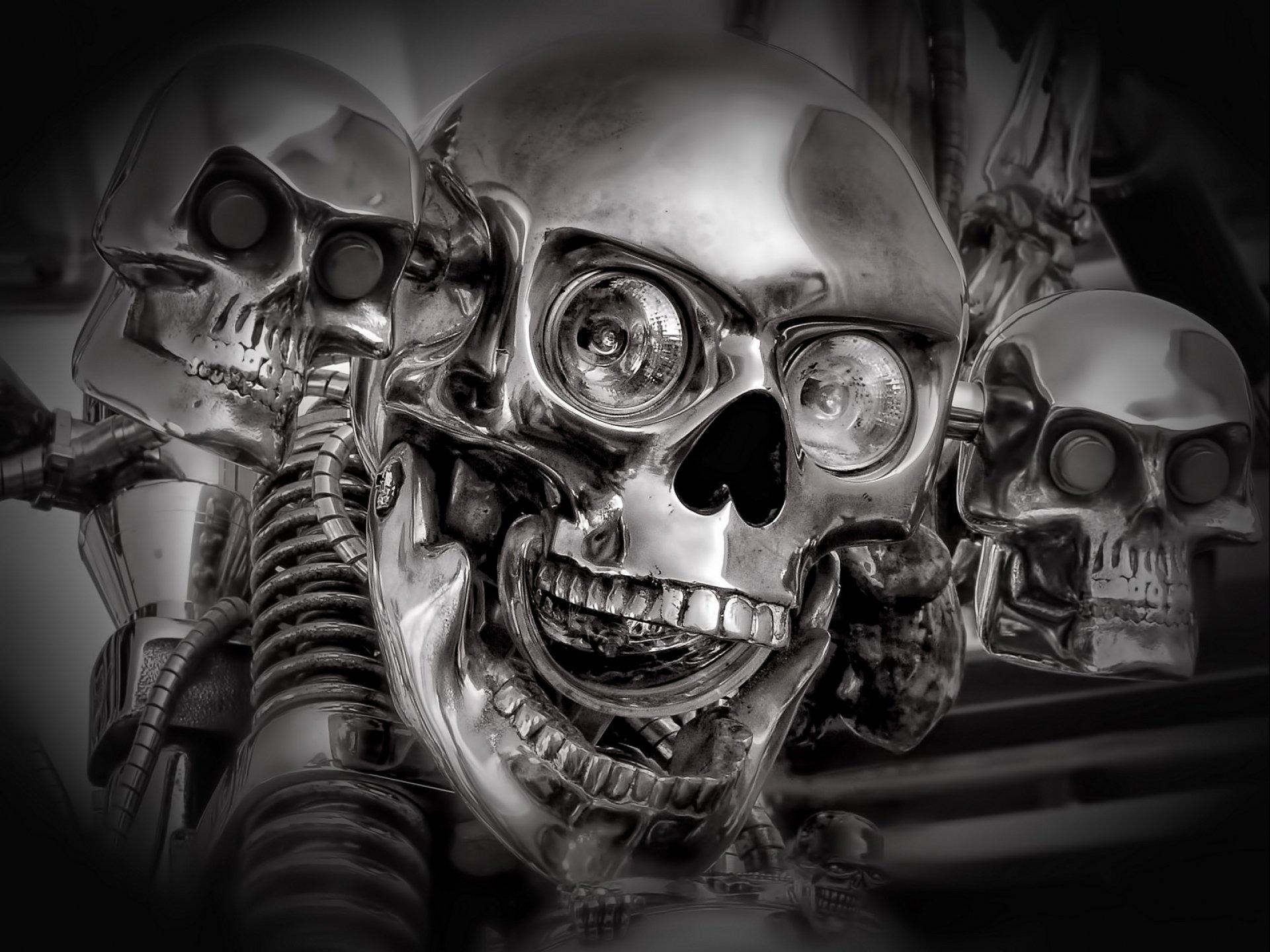 картинки скелетов и черепов на телефон