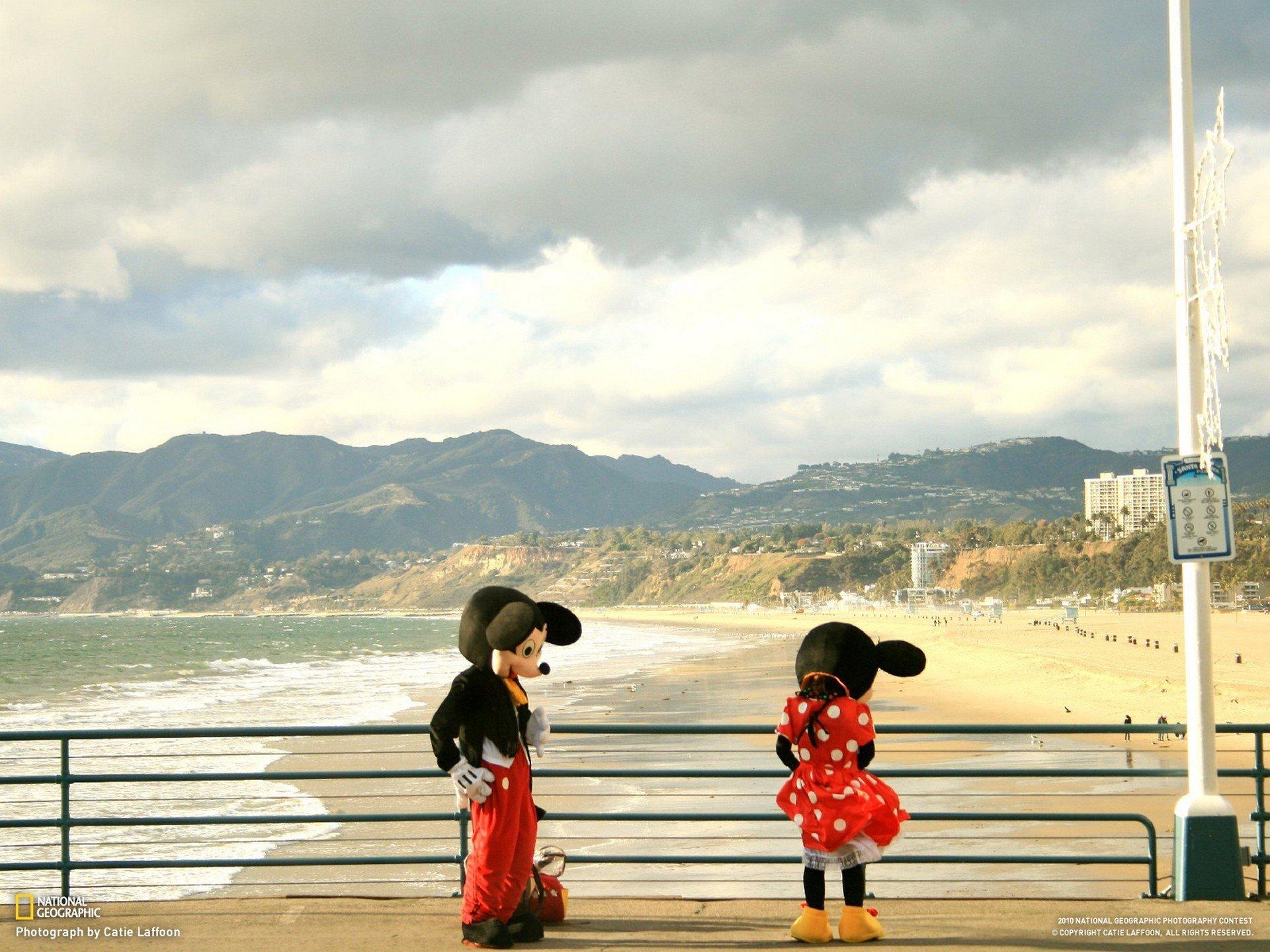 デスクトップ壁紙 19x1440 Px ビーチ カリフォルニア コスチューム 面白い 地理的 風景 ミッキー ミニ モニカ マウス 全国 自然 橋 手すり サンタ 19x1440 Goodfon デスクトップ壁紙 Wallhere