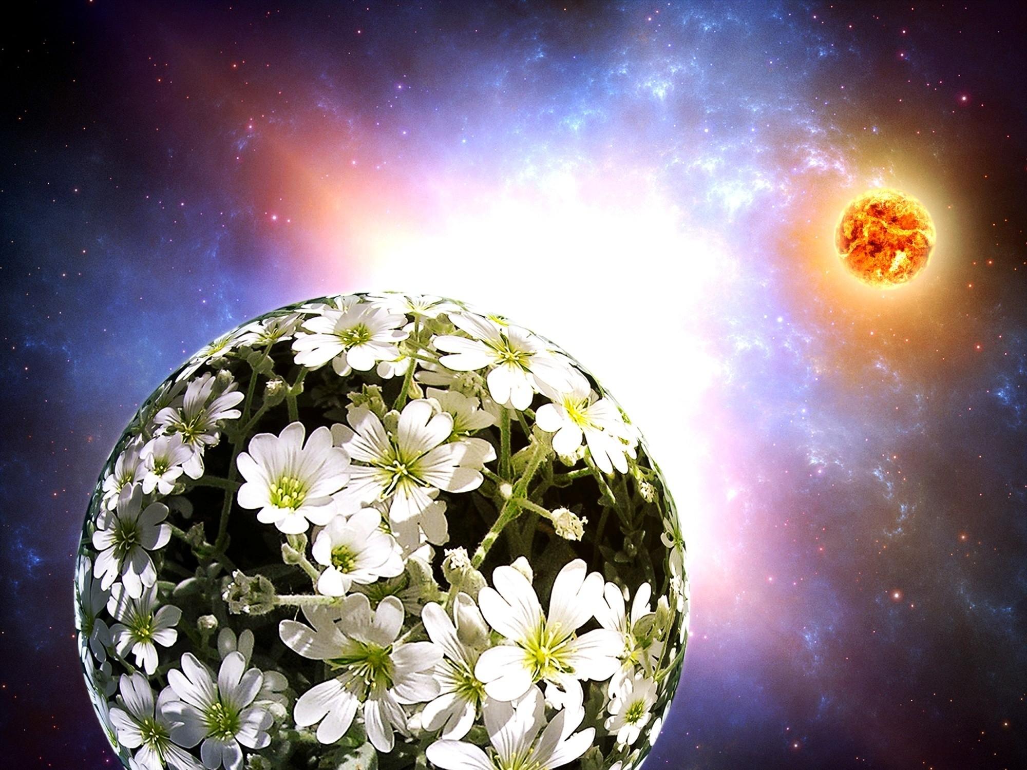 Доставка, удивительный букет для планеты земля