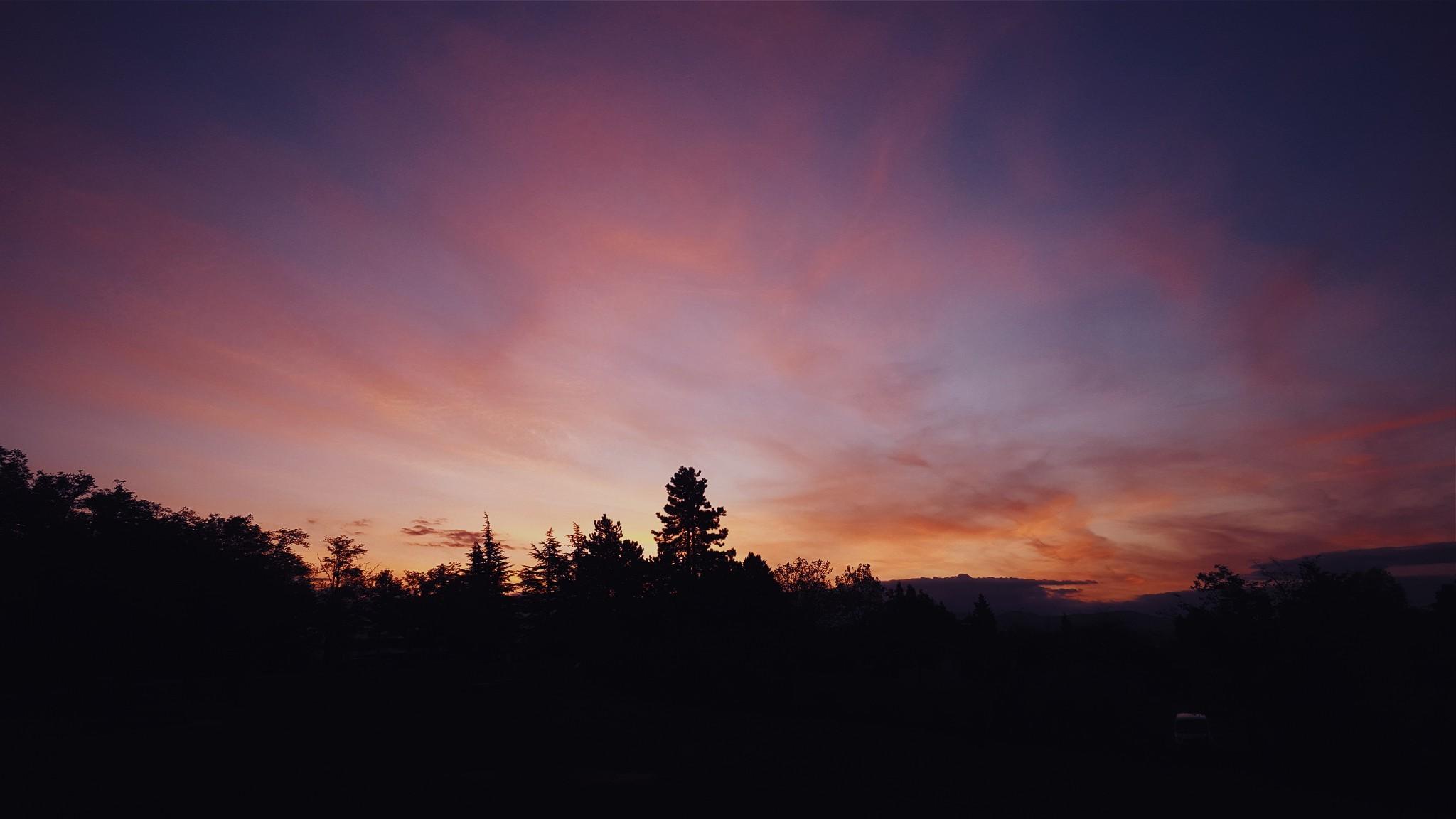 デスクトップ壁紙 48x1152 Px 雲 森林 風景 自然 空 日没 木 48x1152 デスクトップ壁紙 Wallhere