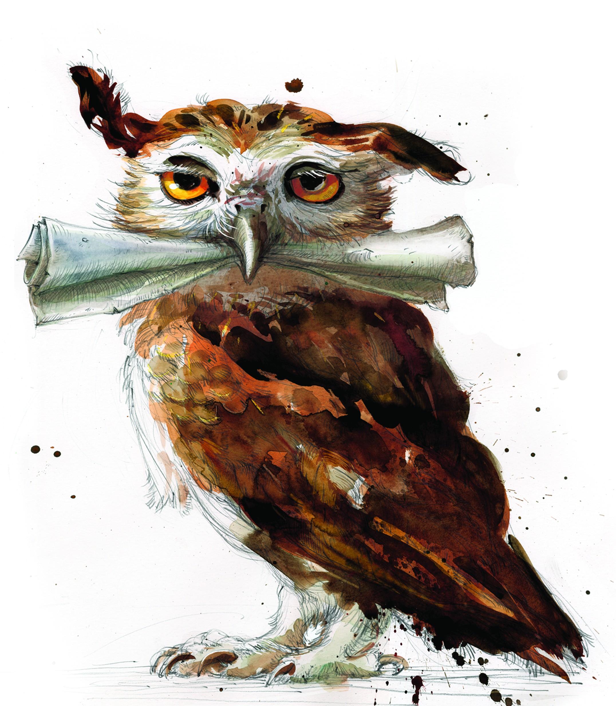Simple Wallpaper Harry Potter Watercolor - 2152x2464-px-digital-art-fantasy-art-Harry-Potter-owl-paint-splatter-painting-paper-portrait-display-white-background-yellow-eyes-1186093  2018_607051.jpg