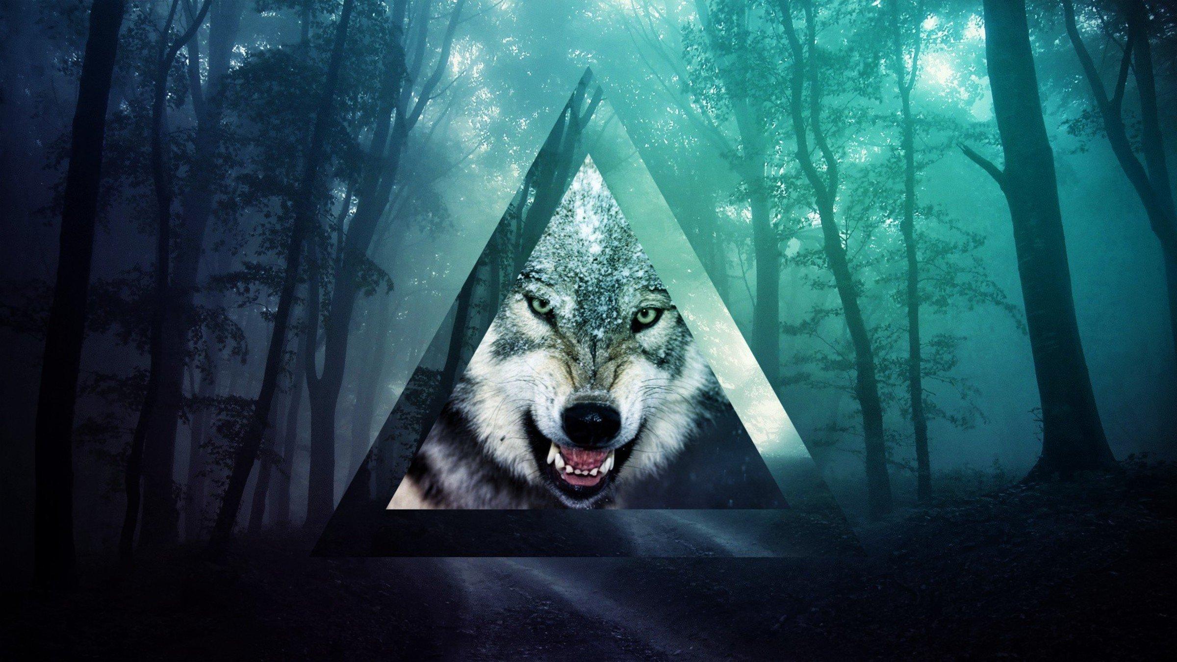 картинки хипстер с волками впечатление