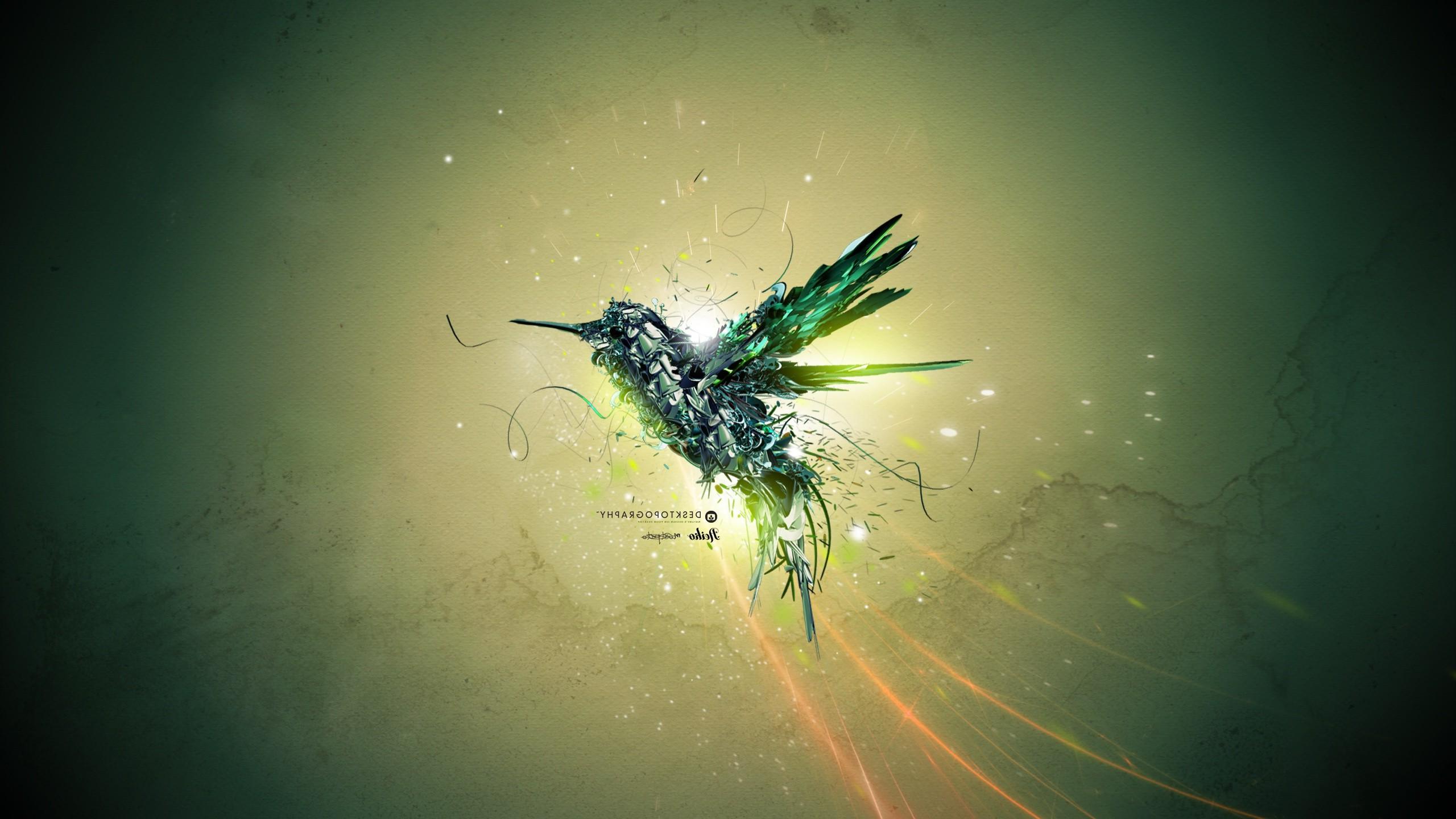 2560x1440 Px Animals Birds Desktopography Digital Art Hummingbirds Nature