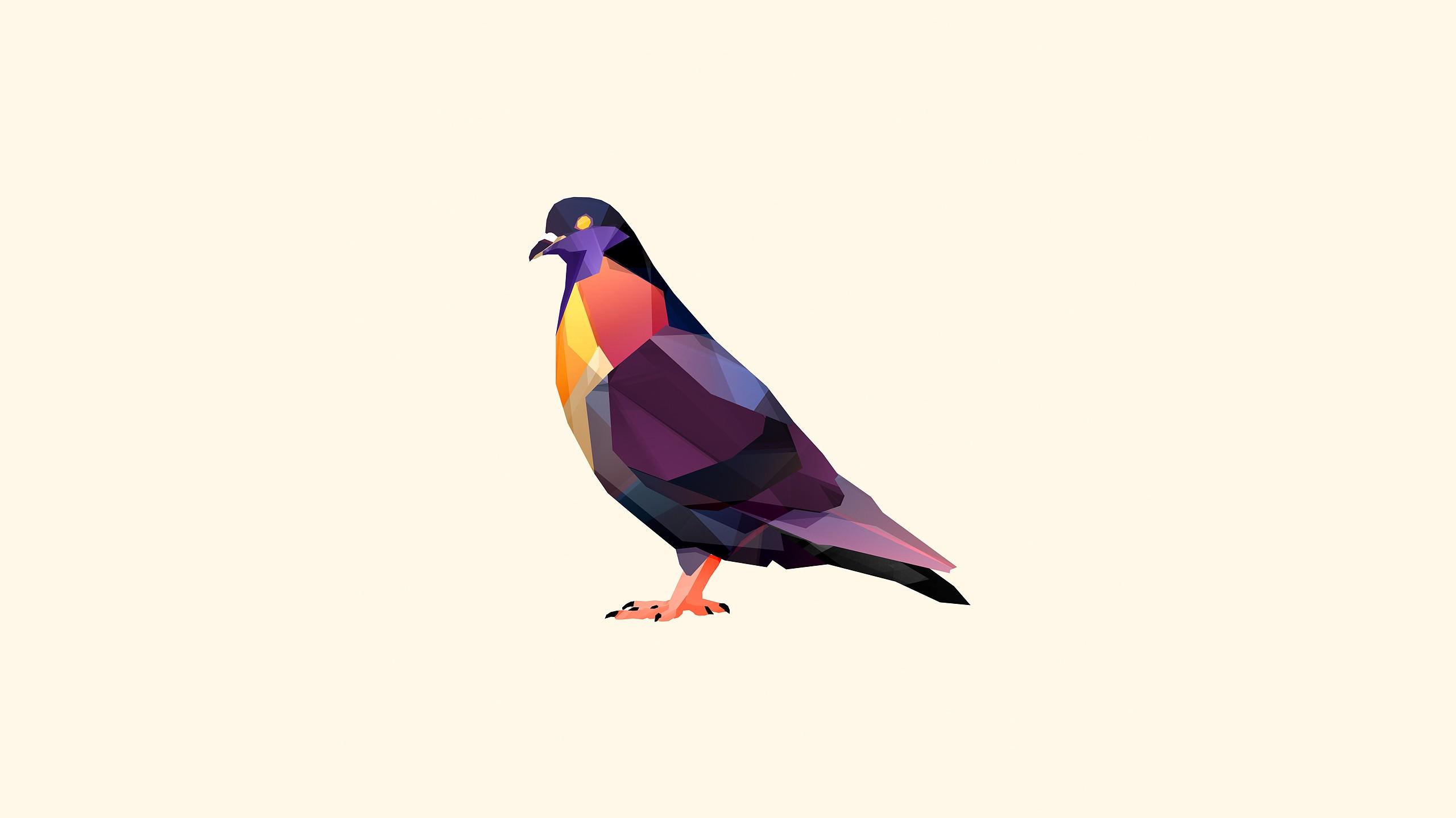 2560x1440 Px Animals Birds Digital Art Facets Justin Maller Pigeons
