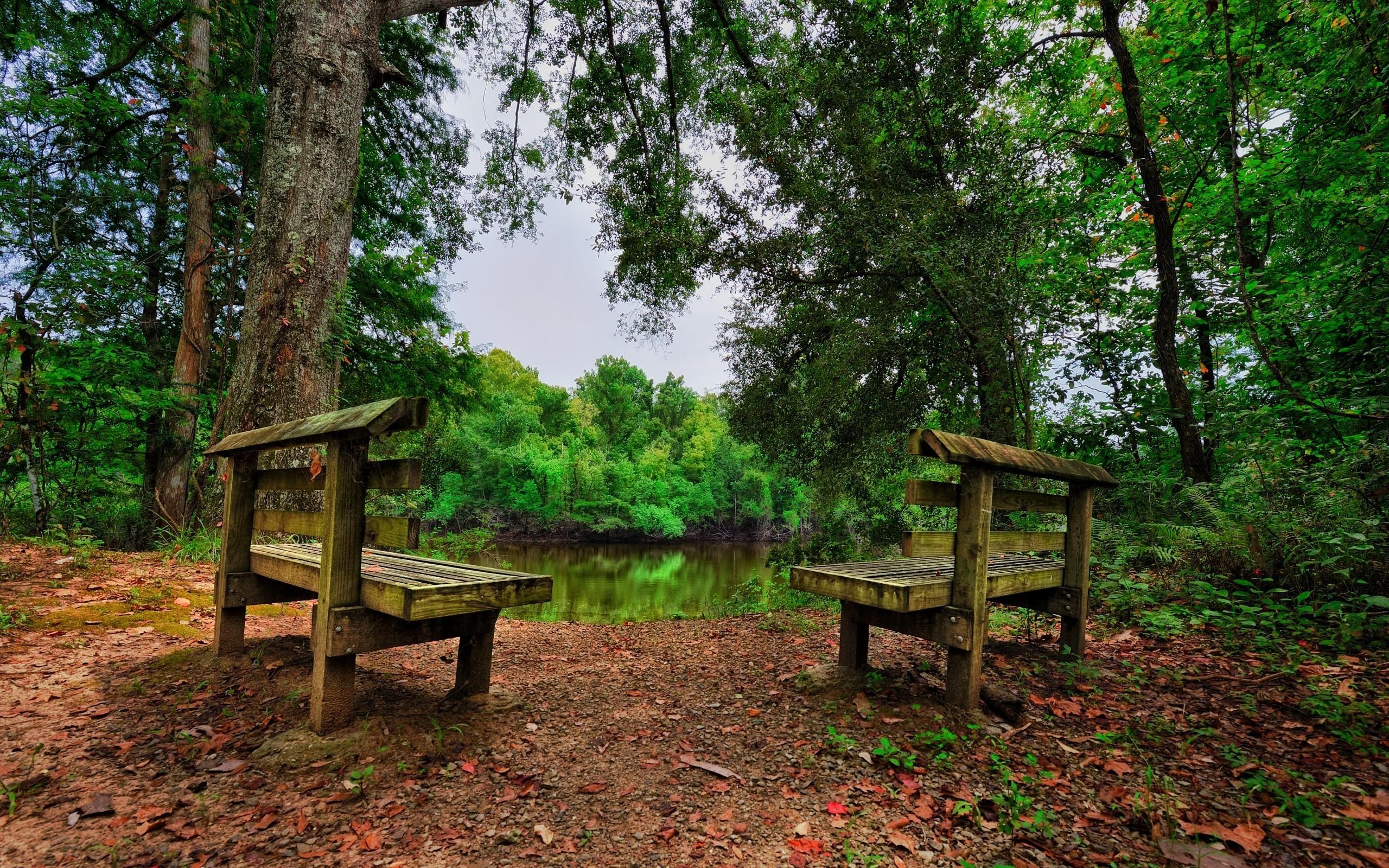 Сексуальная в лес на скамейка
