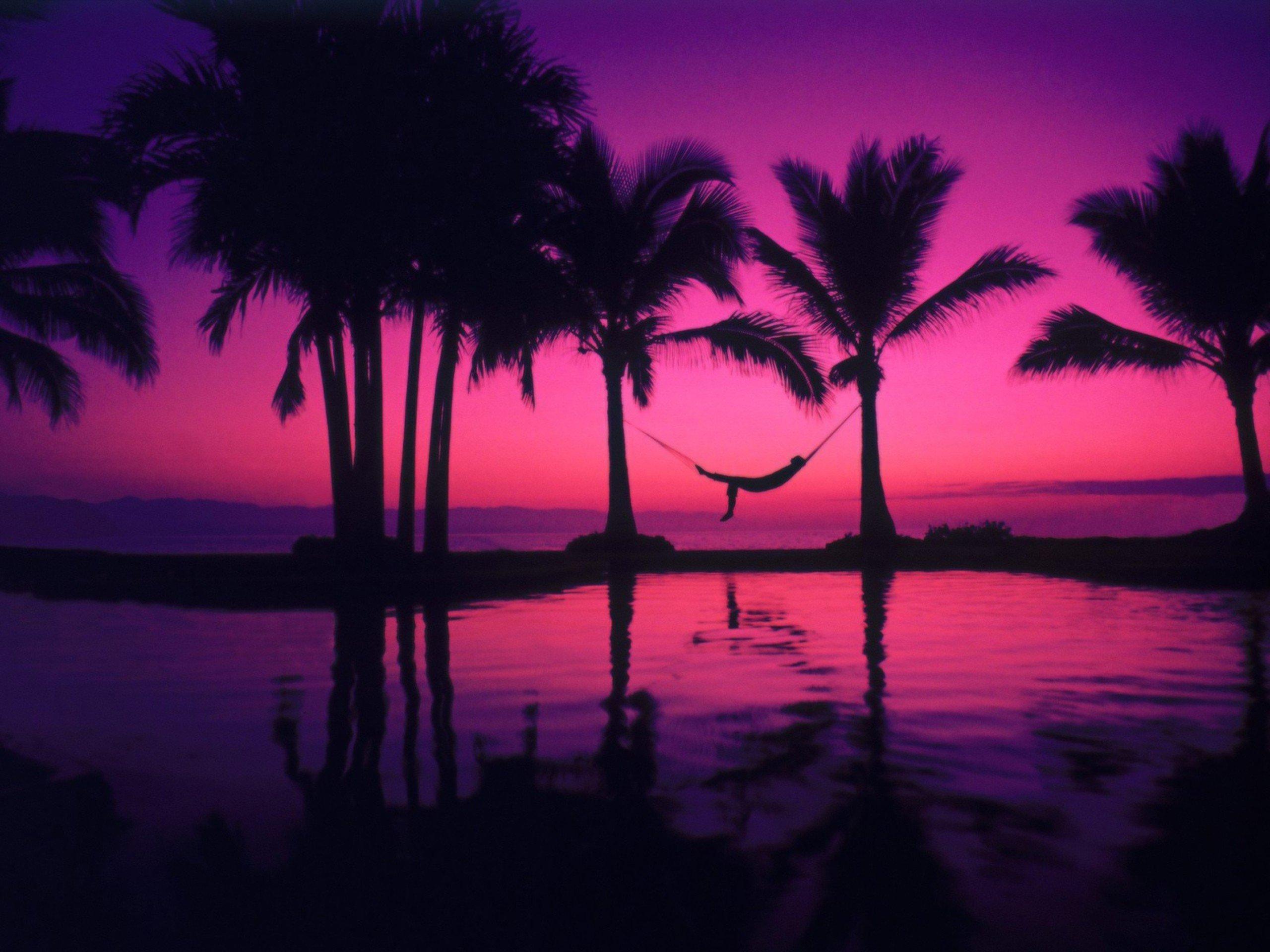 Wallpaper 2560x1920 Px Hammocks Palm Trees Relaxation Relaxing 2560x1920 Wallbase 1276887 Hd Wallpapers Wallhere