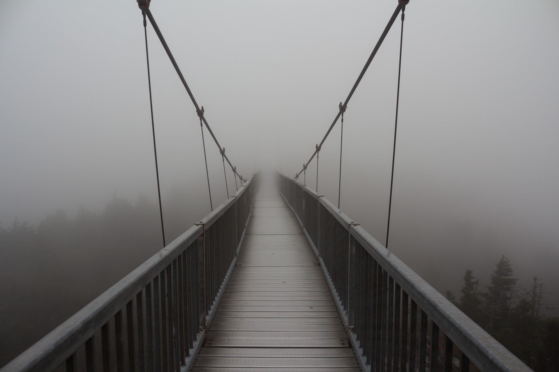 работает мосты над бездной картинки мнению экспертов, залогом