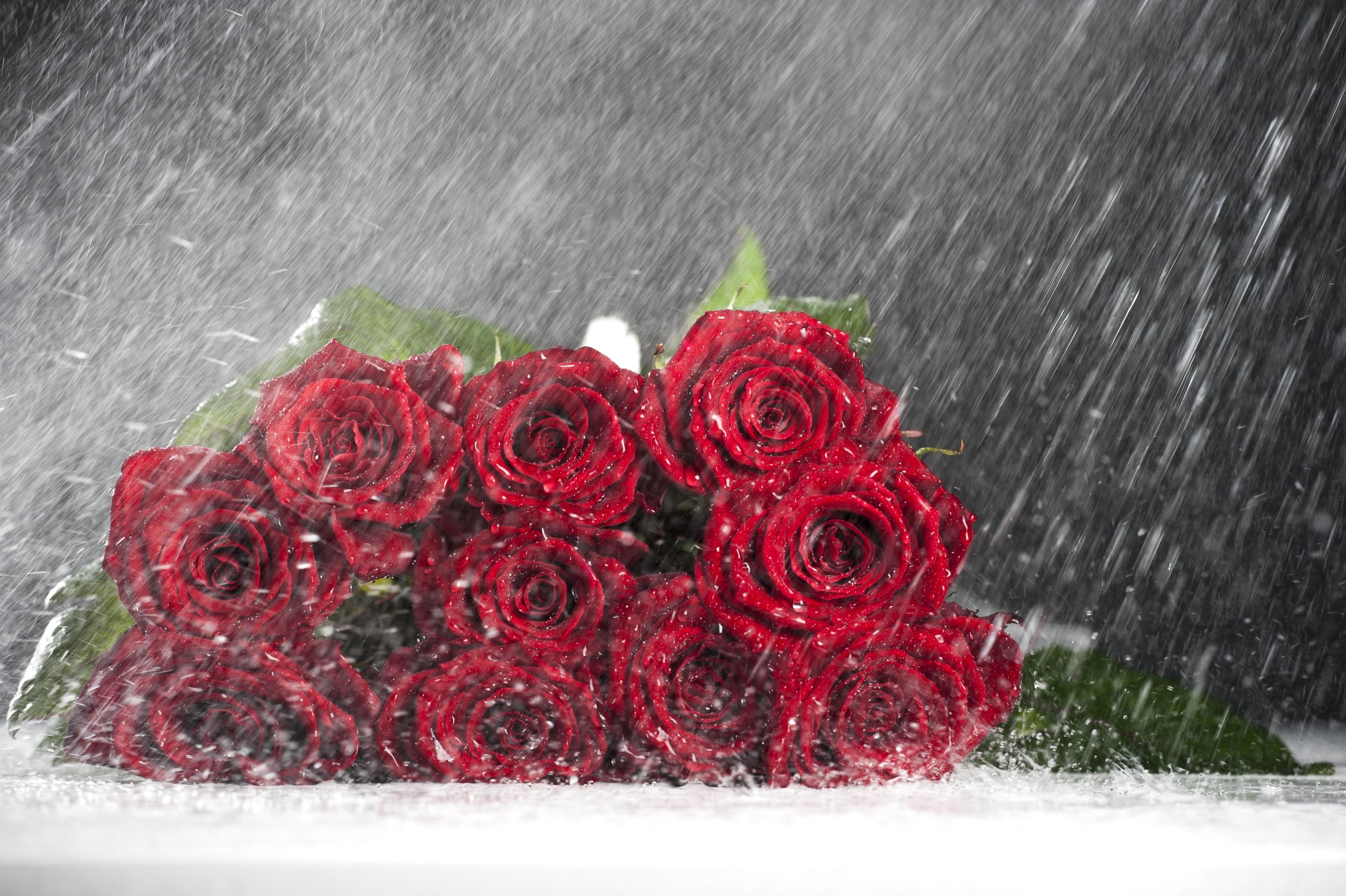 букет роз на дороге картинки общем