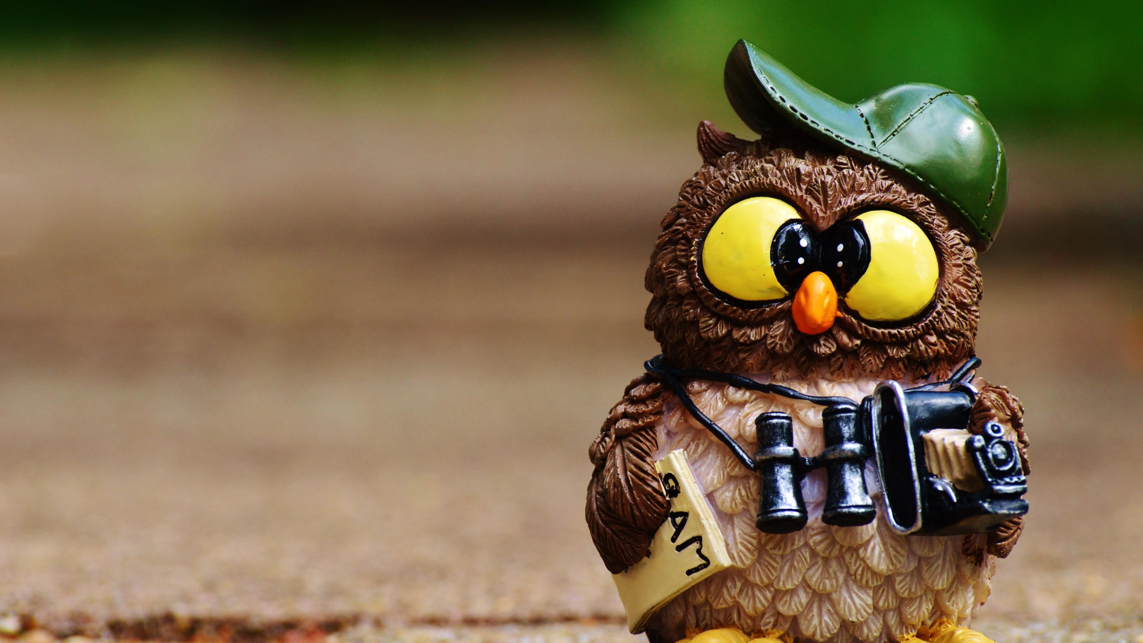Hintergrundbilder  px tiere fernglas vögel kamera