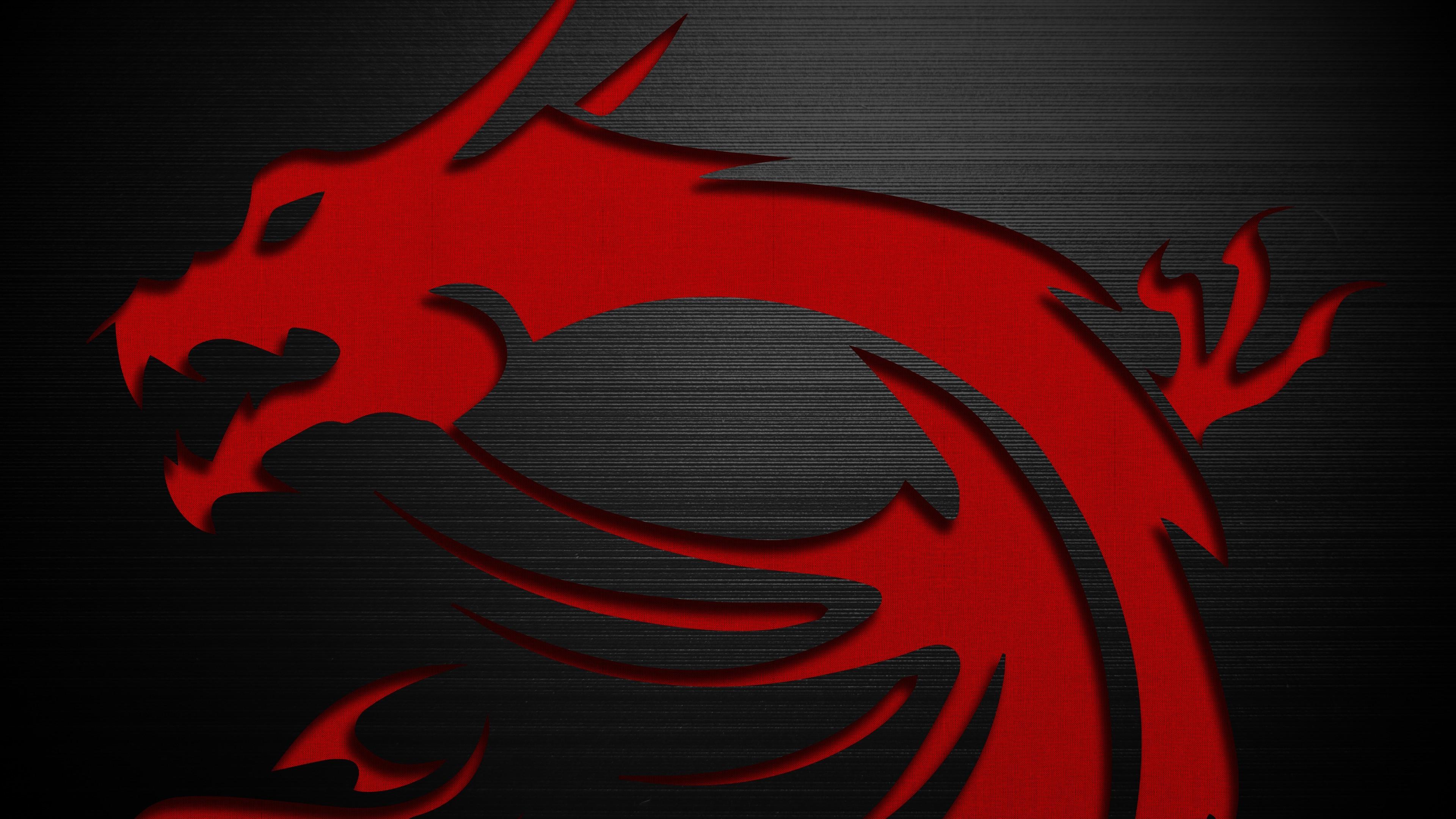 Fondos De Pantalla 3840x2160 Px Dragón Hardware Logo