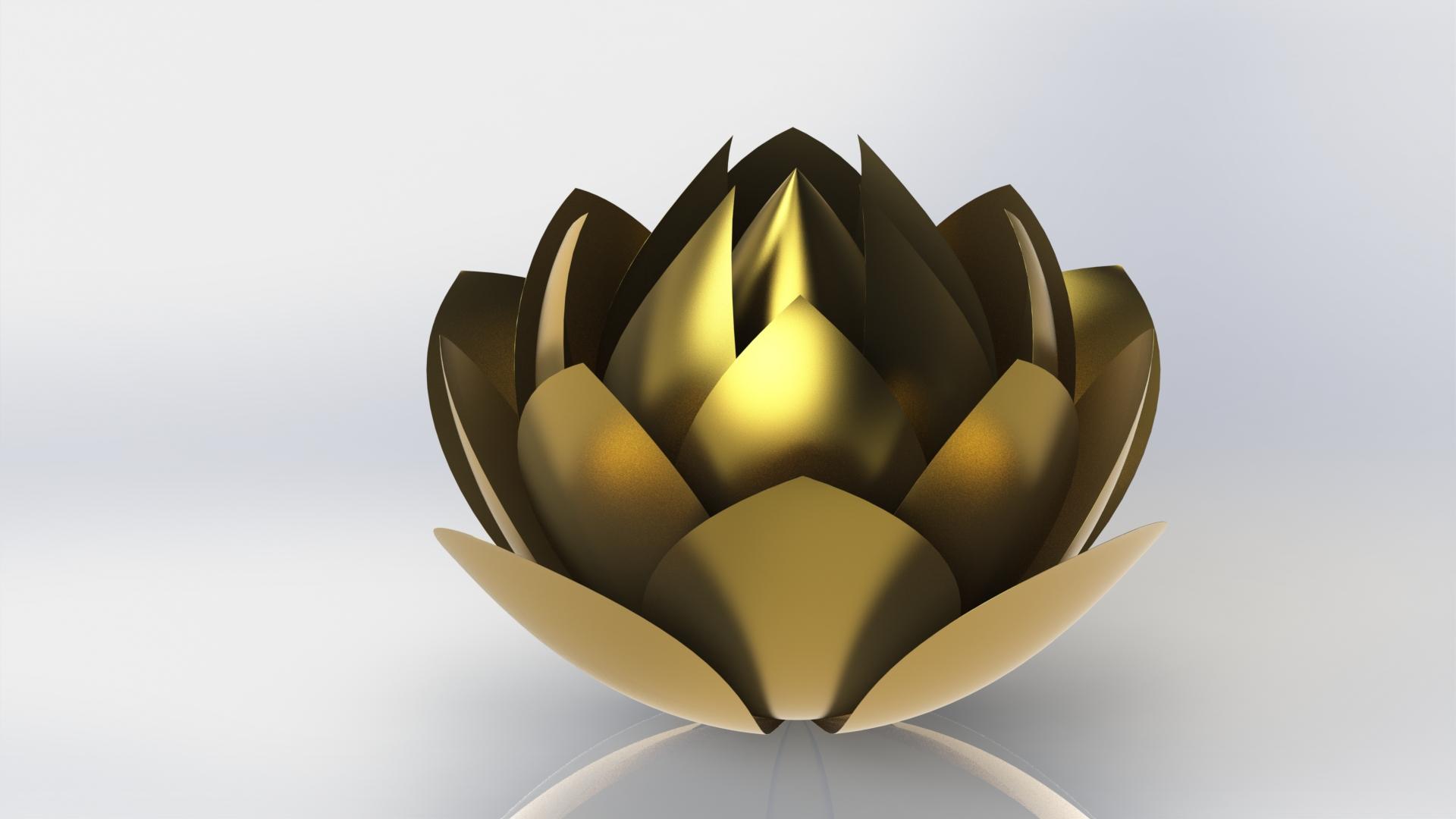 Sfondi desktop fiori 1920x1080