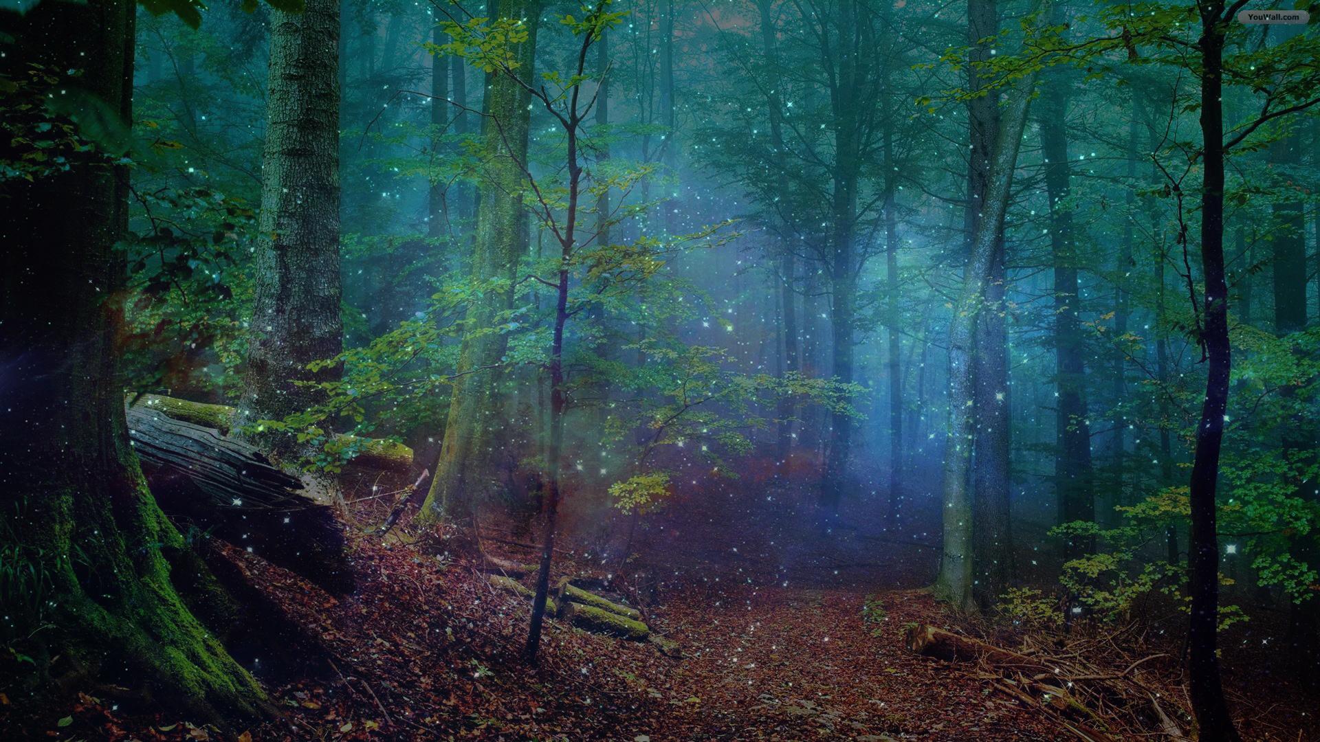 3D Fractal Forest Trees